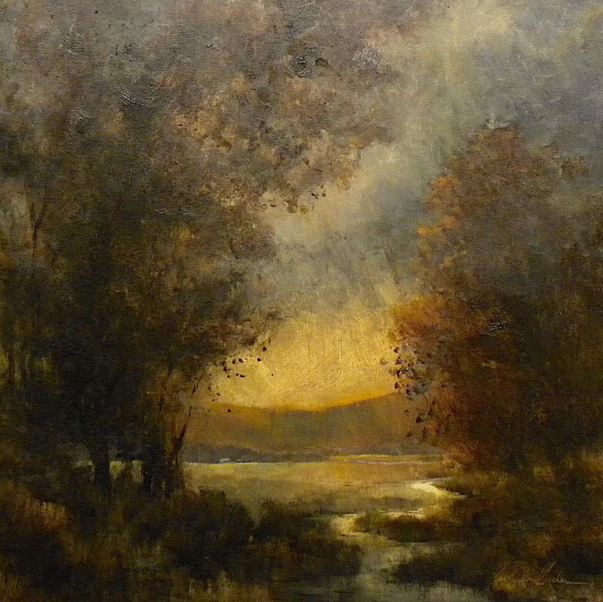 Evening Lace by Carolyn Anne Crocker