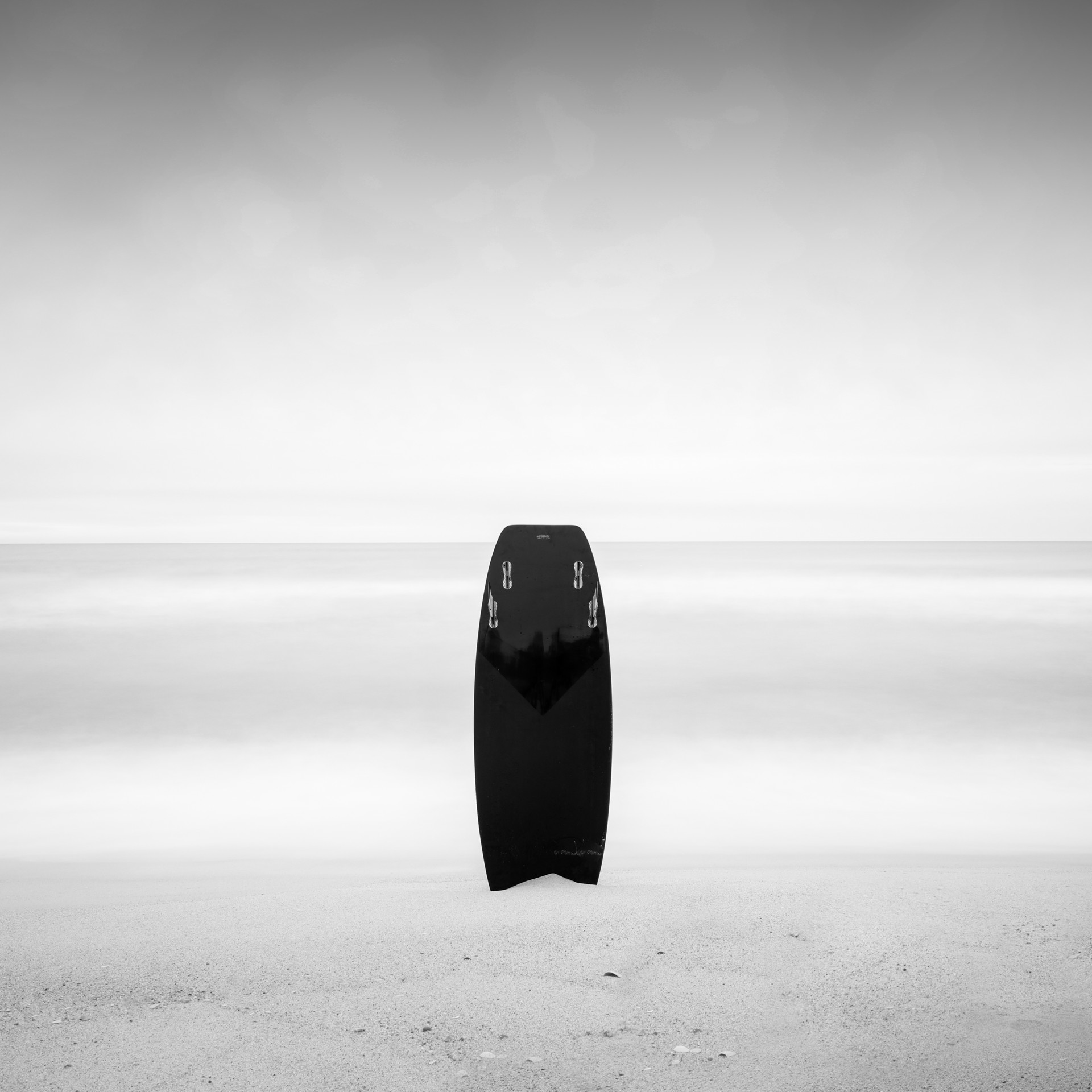 Black Dog Surfboard by Keith Ramsdell