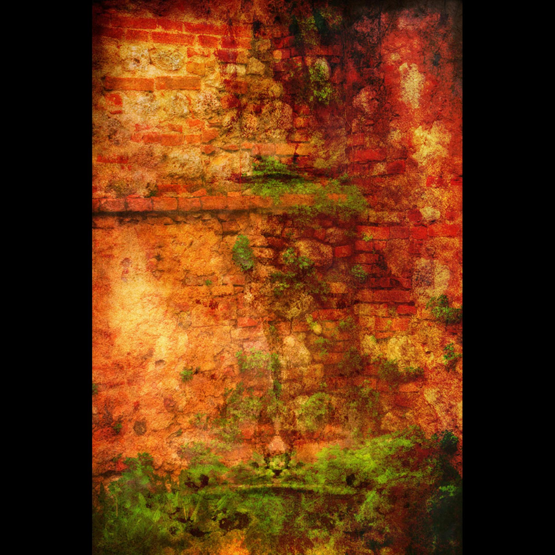 Radi Wall  by Bob Coates