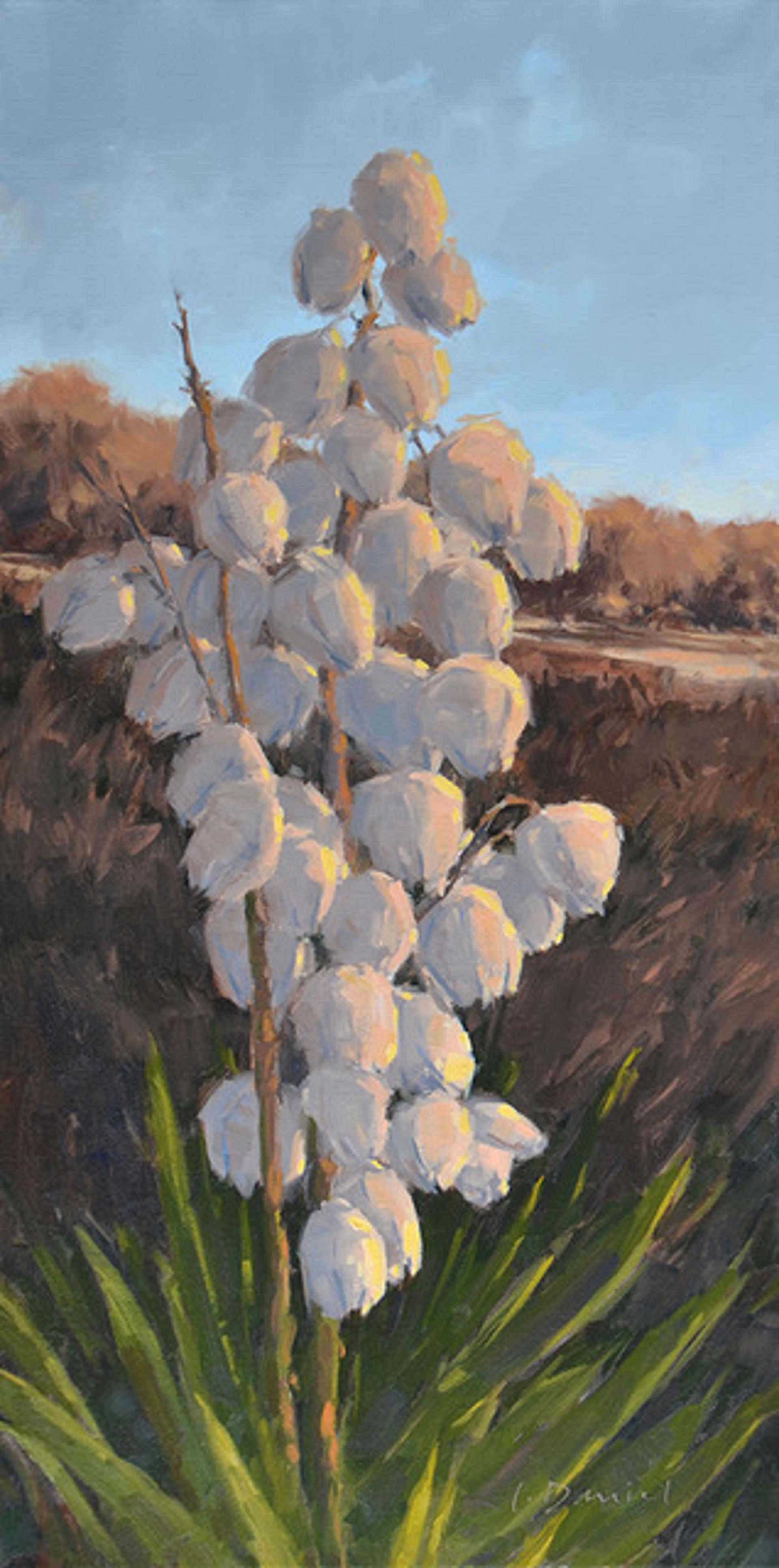 Seaside Blossoms by LAUREL DANIEL