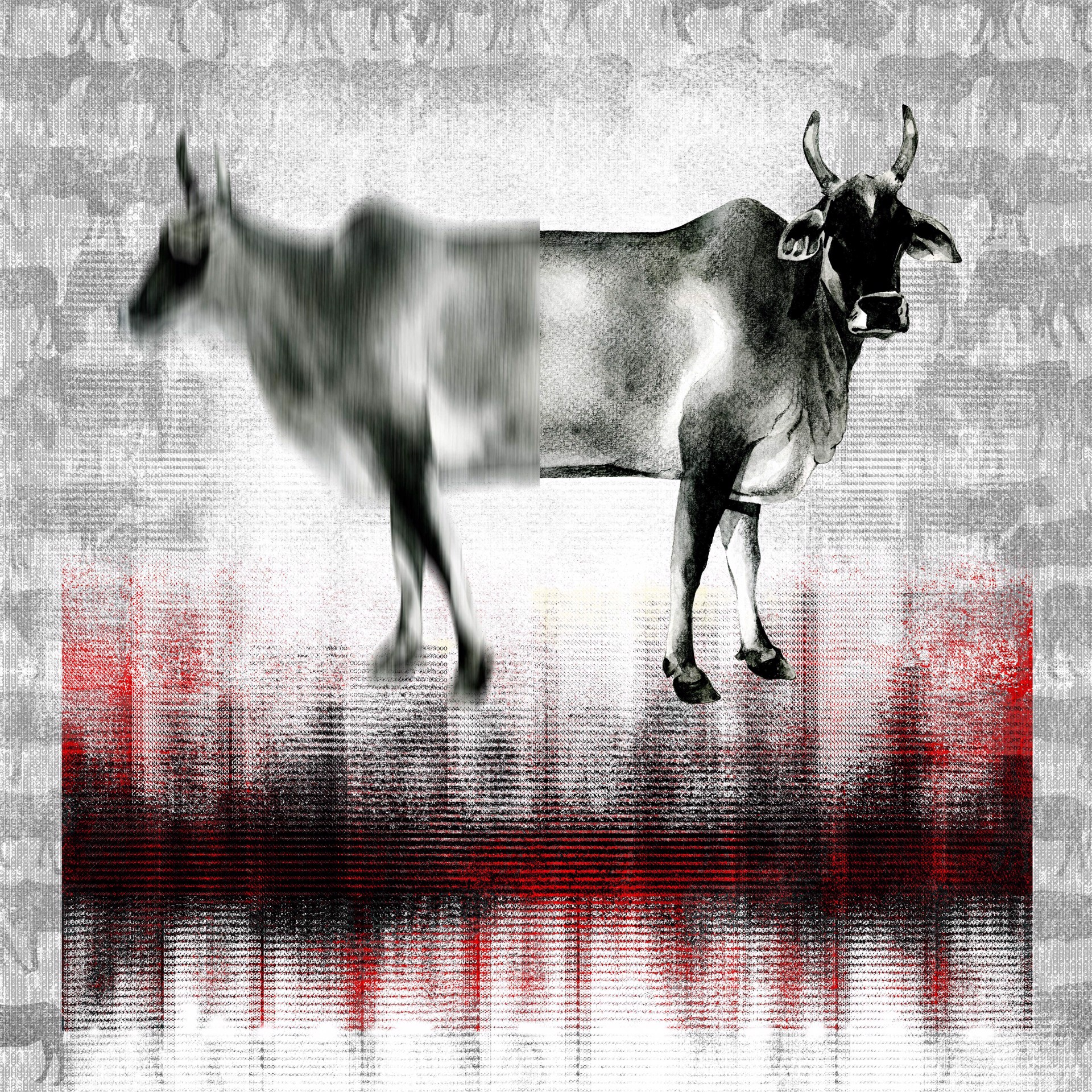 The Holy Cow by Binay Sinha