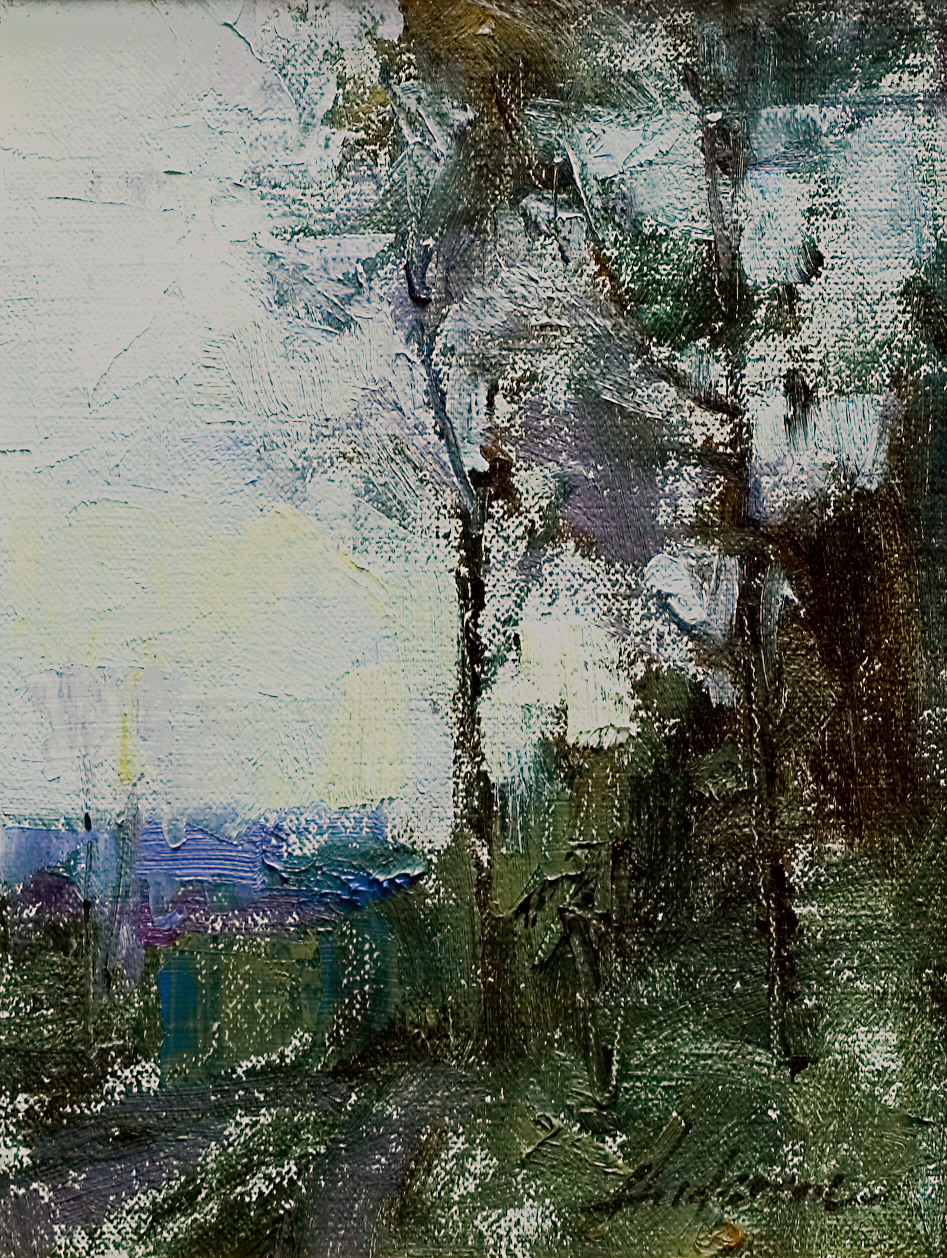 Trees and Sky by Carolyn Anderson