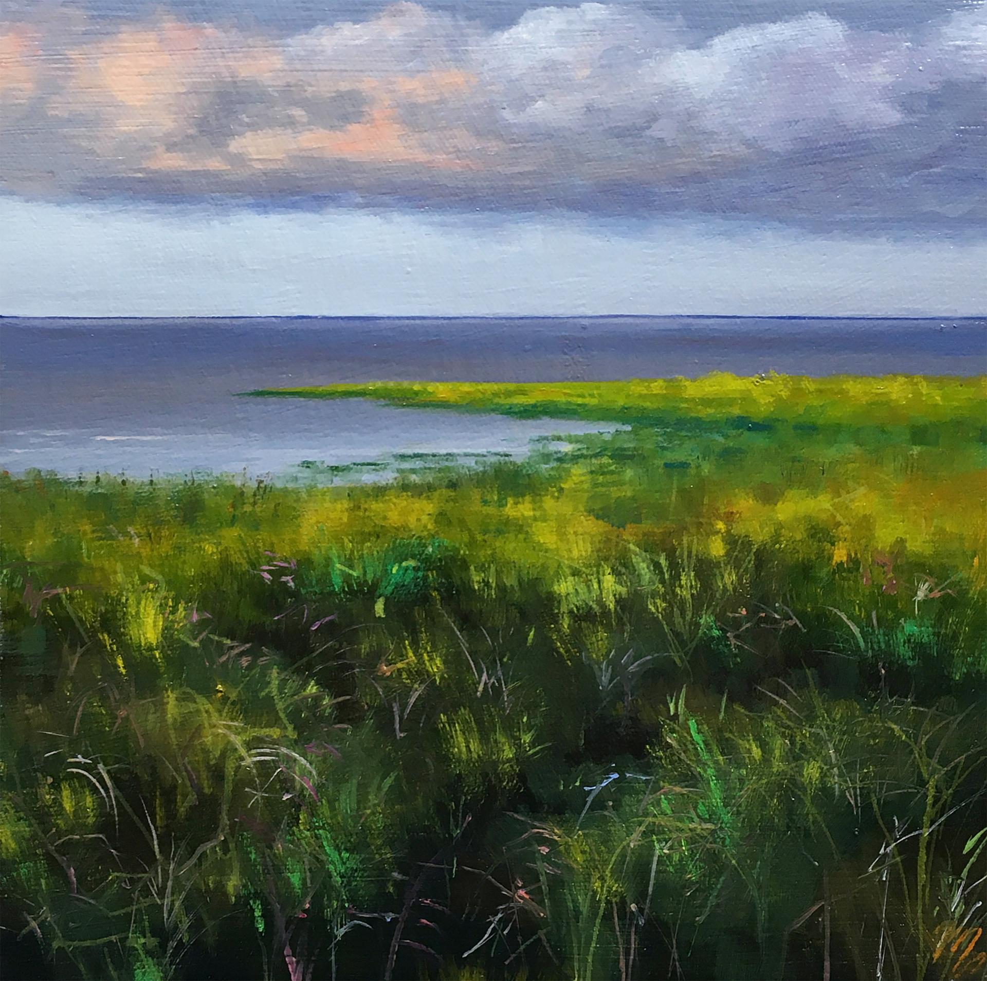 Evening Storm by Mary VanLandingham