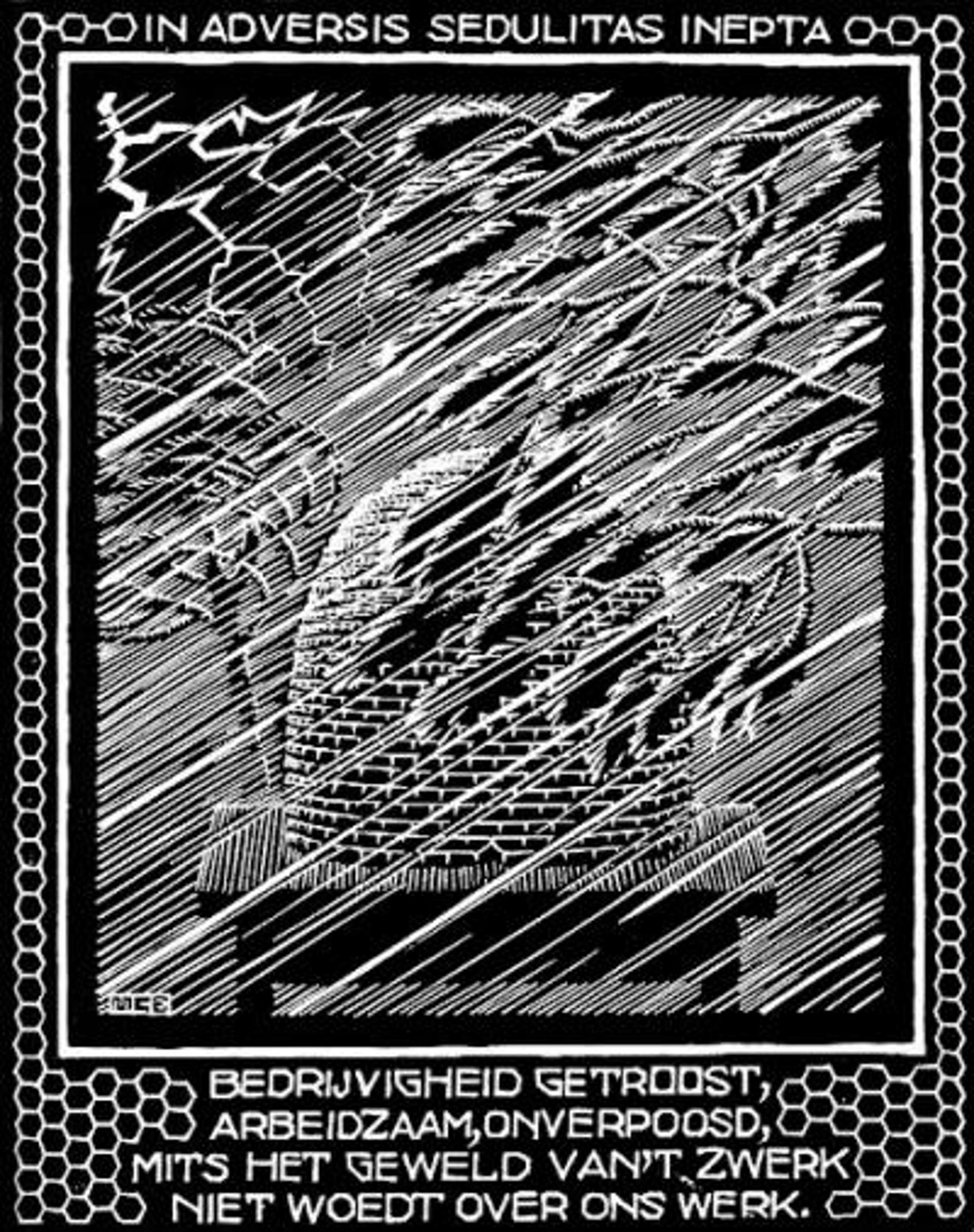 Emblemata - Beehive by M.C. Escher