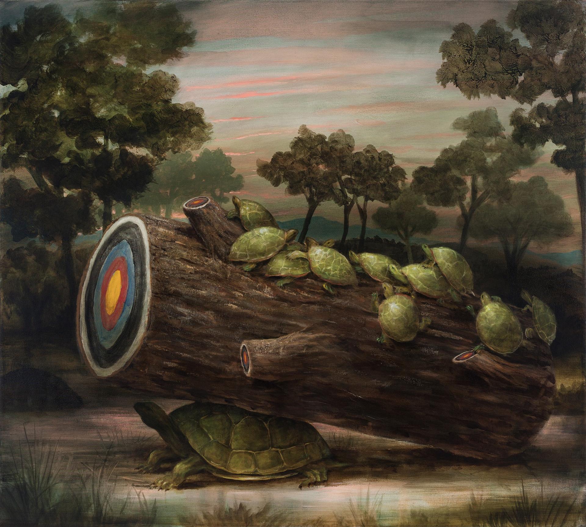 Turtle Island by Kevin Sloan