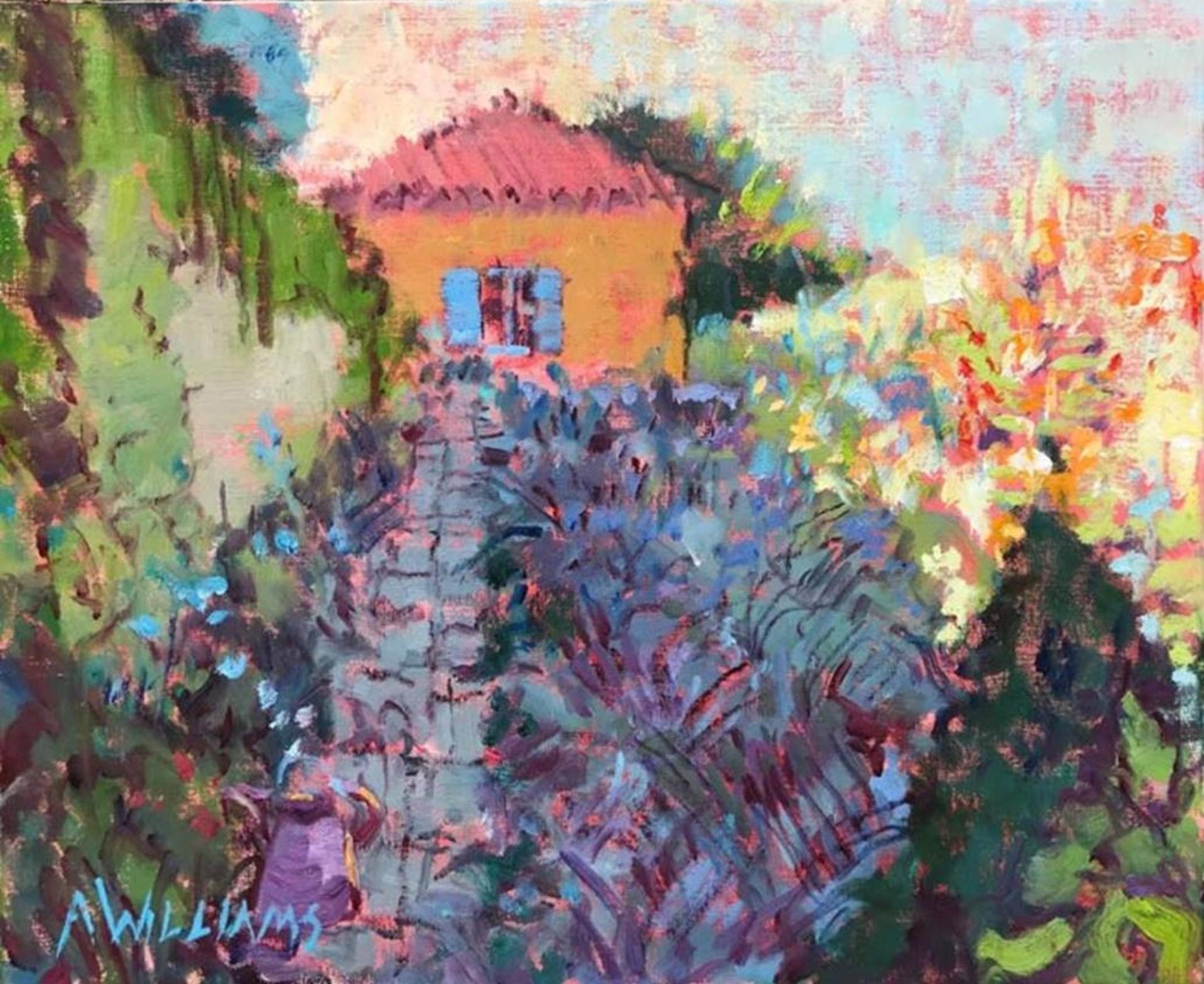 Garden Paradise by Alice Williams