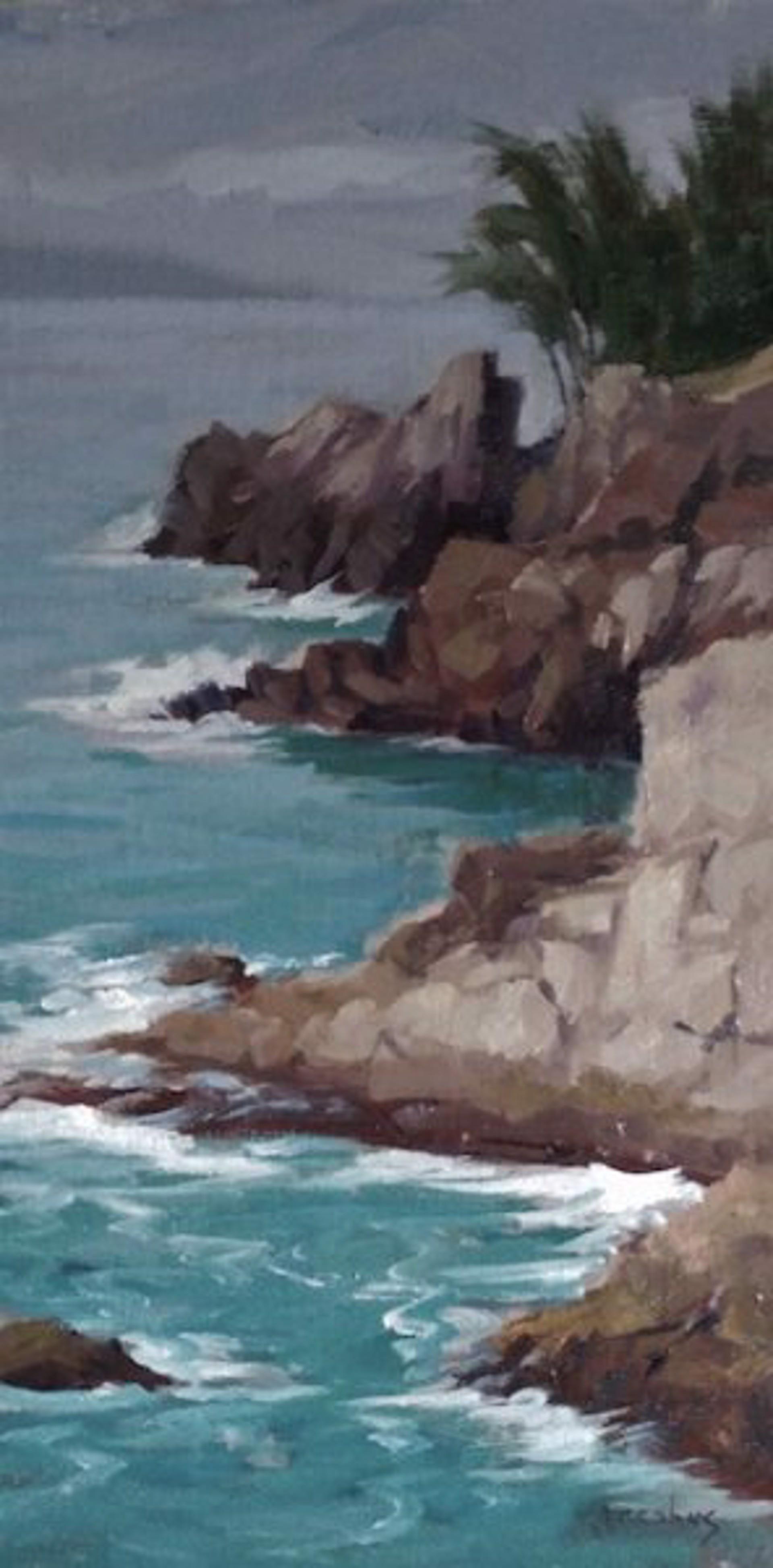 Kapalua Cliff by Jacobus Baas