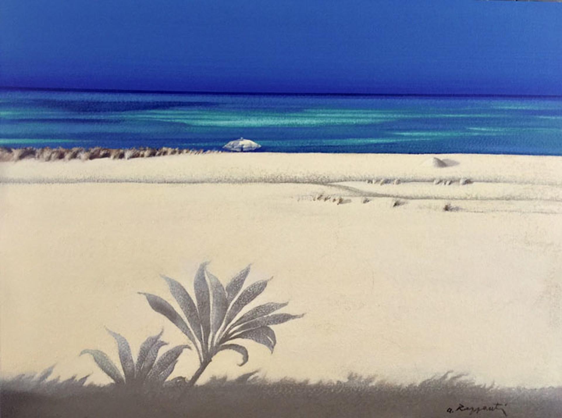 White Sand With Ti Leaf by Andrea Razzauti