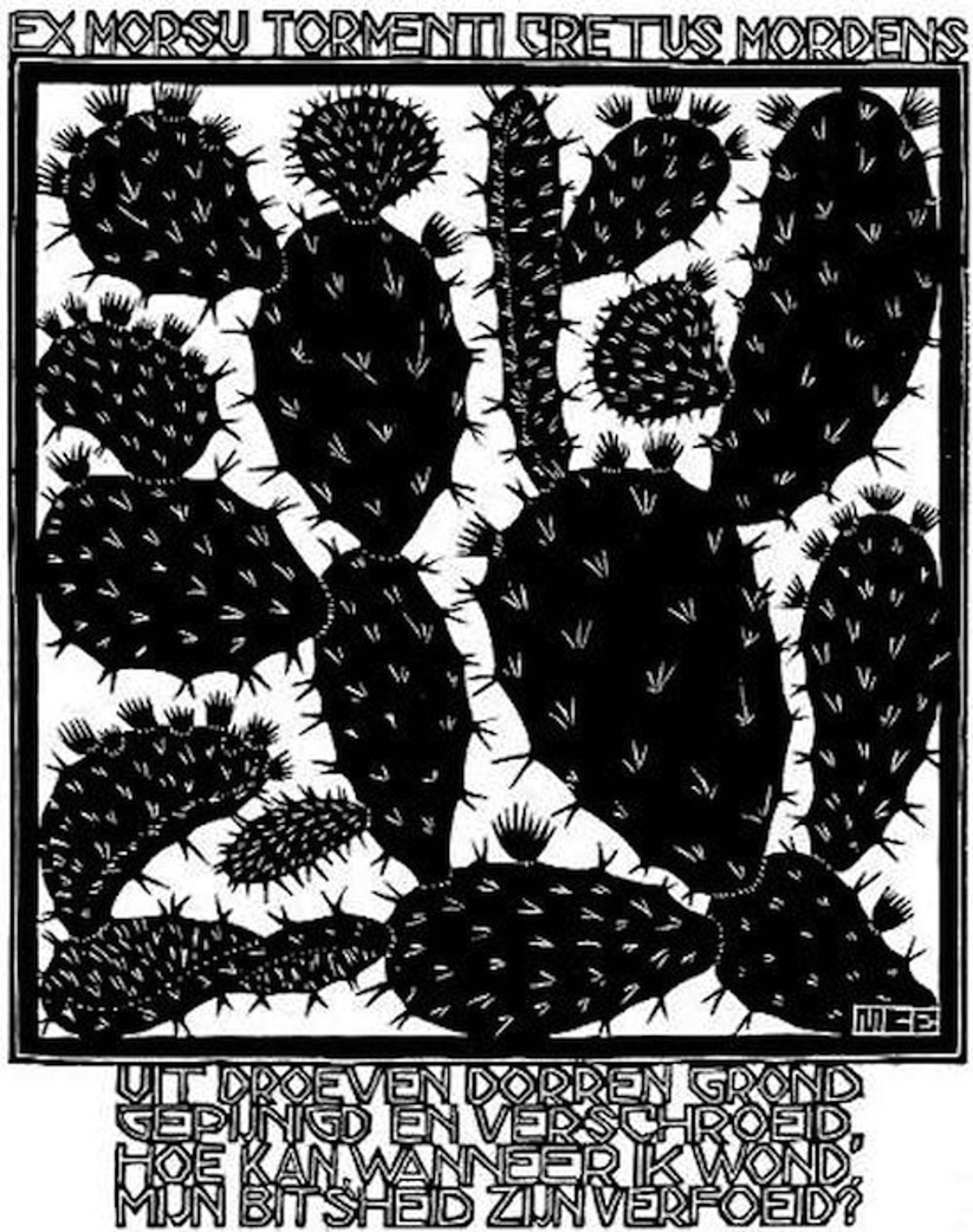 Emblemata - Cactus by M.C. Escher