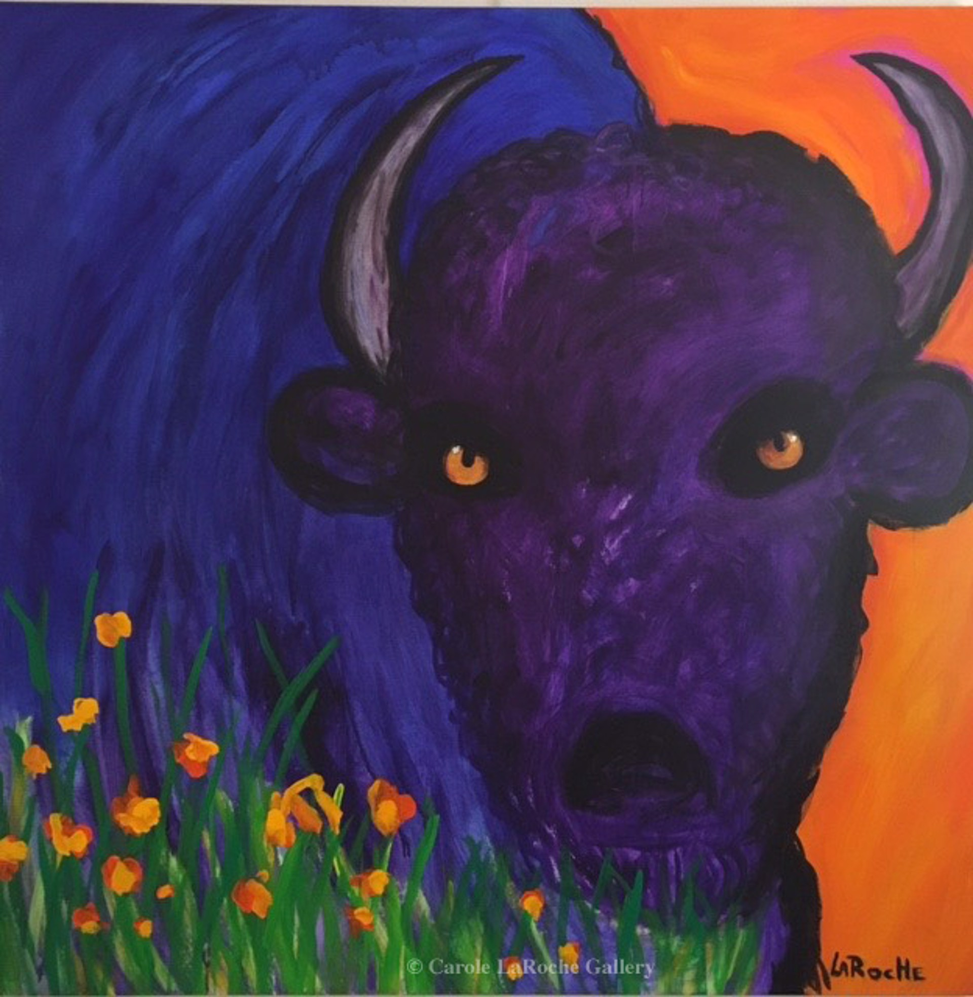 ORANGE SKY / BLUE BUFFALO by Carole LaRoche