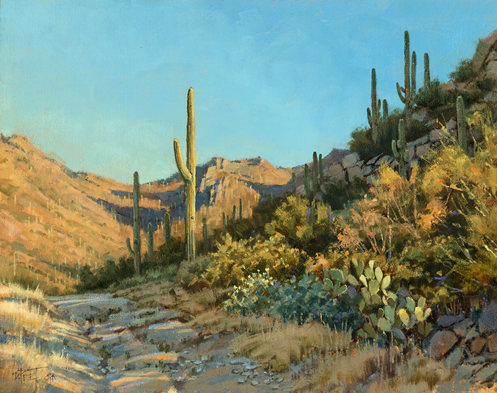 A Cool Desert Morning by Darcie Peet