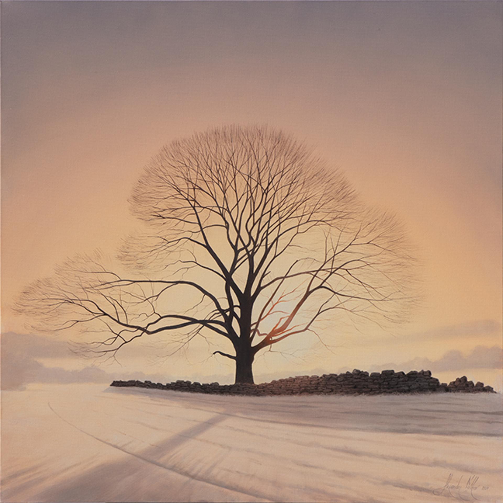 Morning Frost by Alexander Volkov