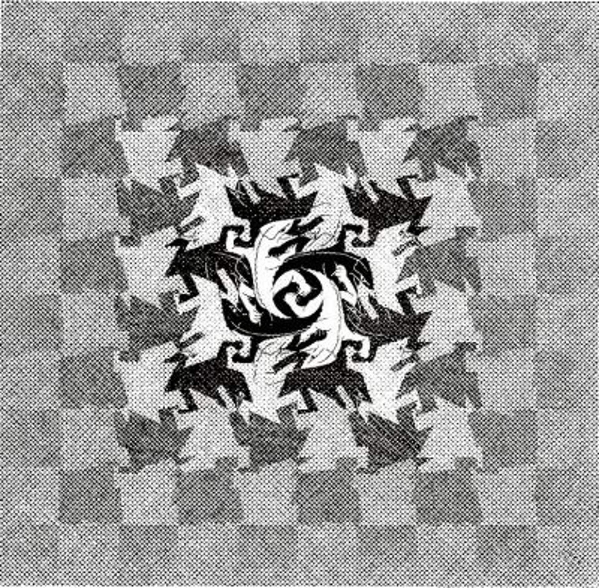 Development I by M.C. Escher
