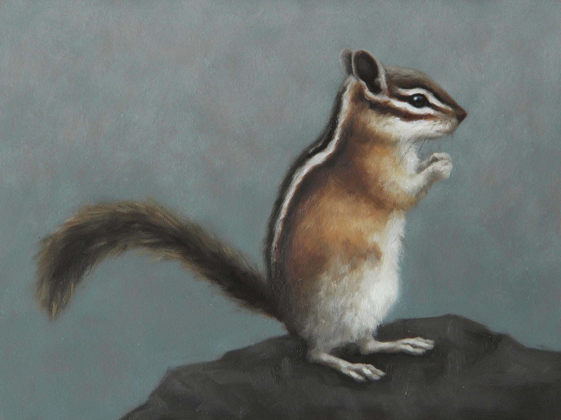 Western   Chipmunk IV by Sarah Becktel