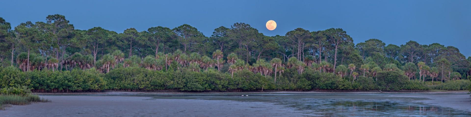 Moonrise Over Caladesi III by Carlton Ward Jr