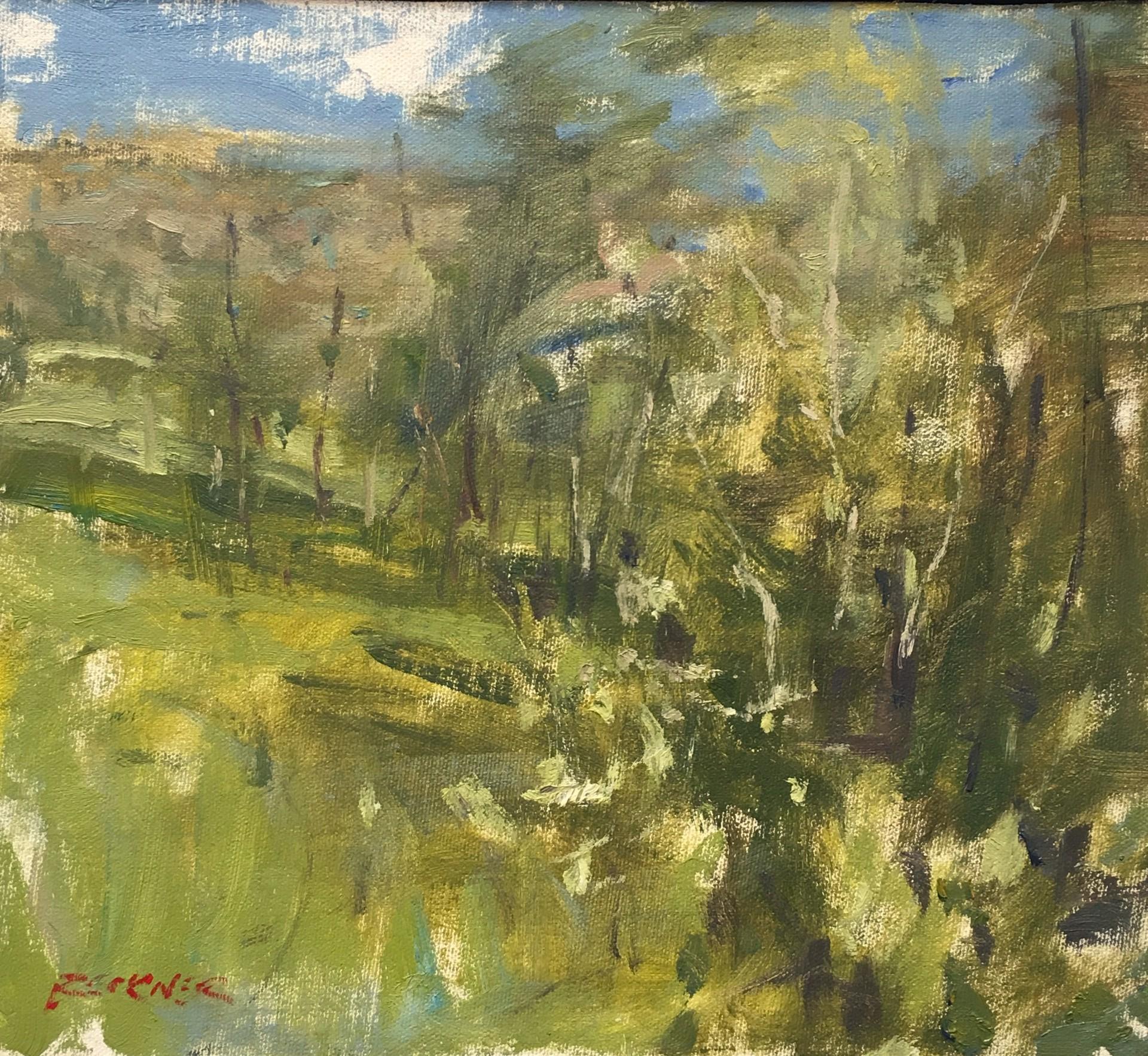 Meadow by Jim Beckner