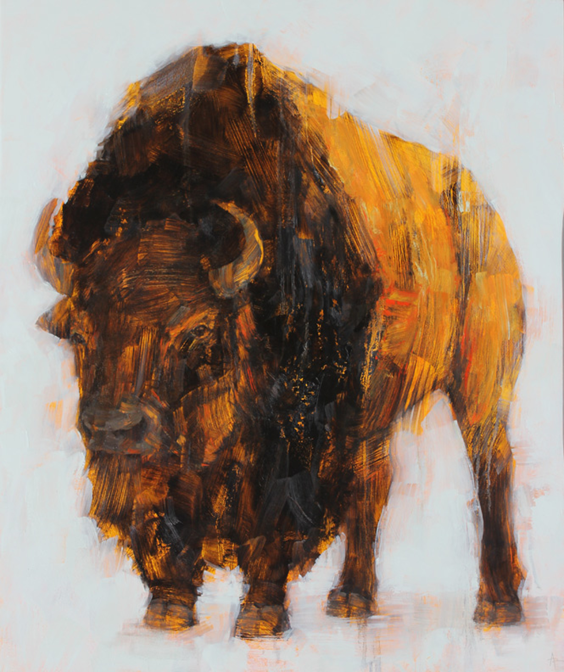 Bison  by Angie Renfro