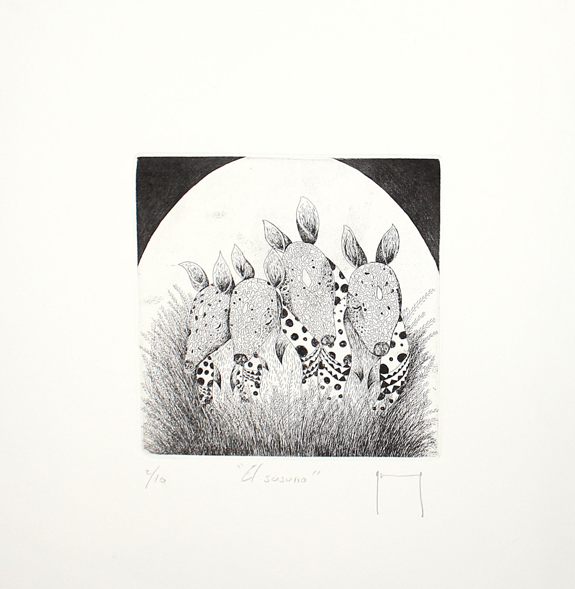 El Sosorro (Framed) by Miguel Jimenez Martinez