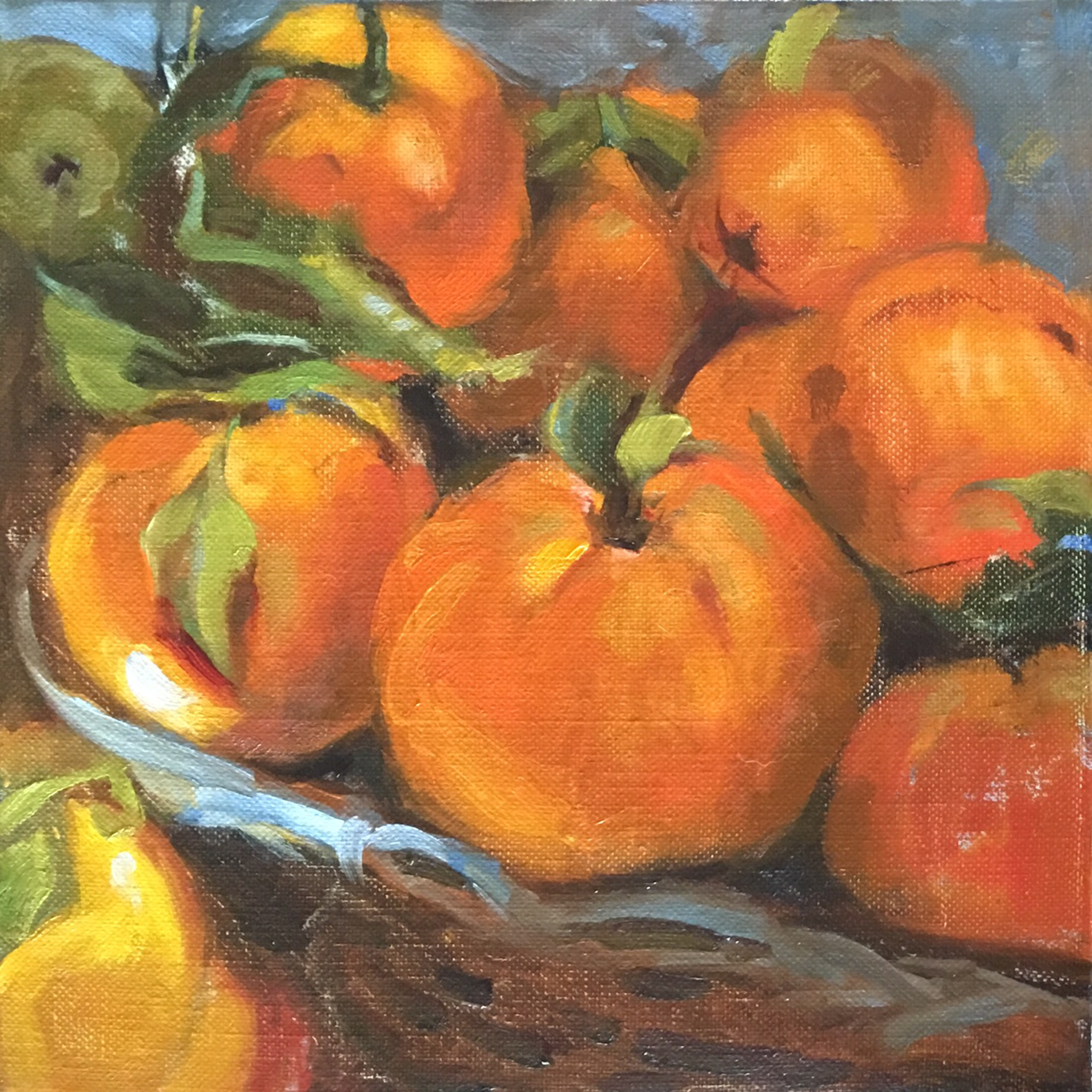 Apples to Oranges by Laurie Meyer