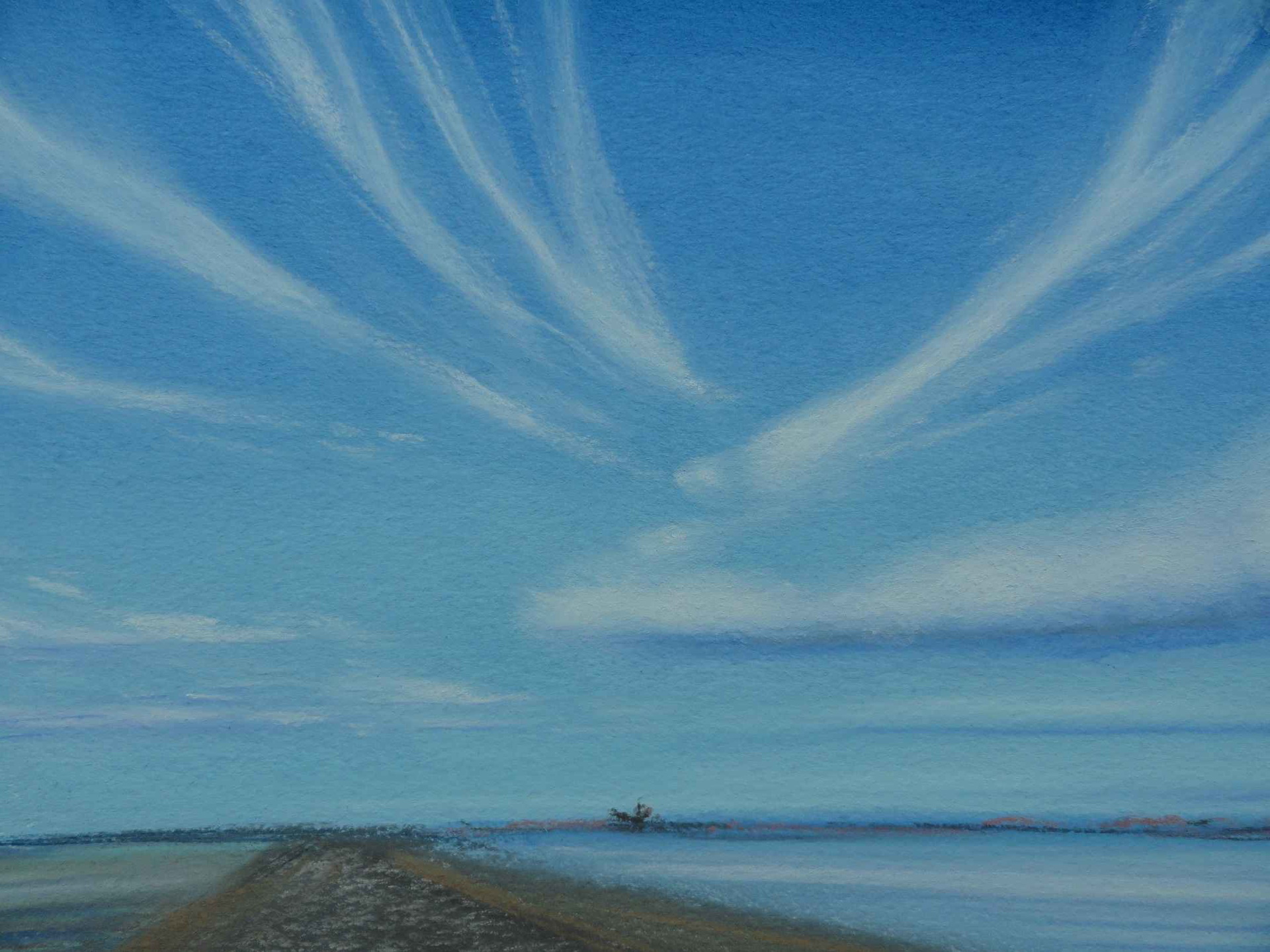 Ocean Highway Wispy by Sue Sneddon