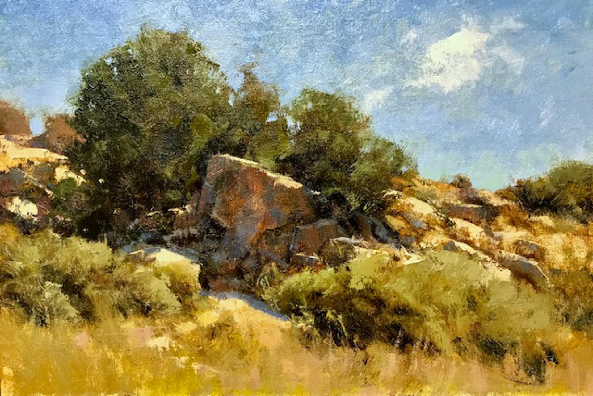 High Desert Hillside by Michael J Lynch