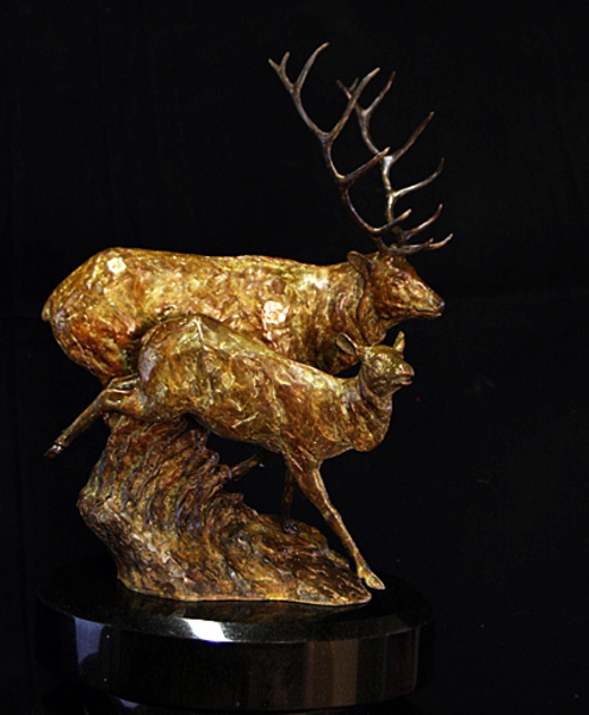 The Gathering Elk by Melvin Johansen