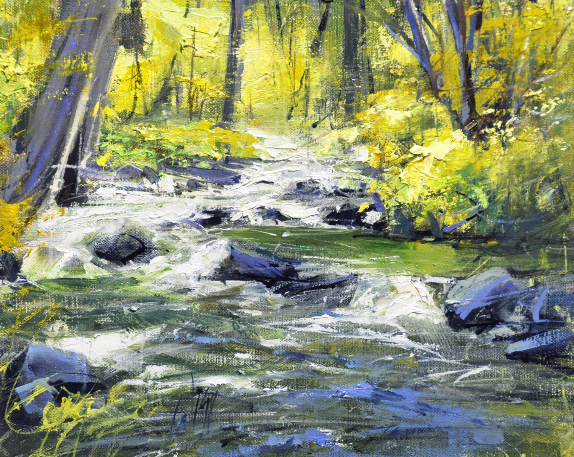 Shady Brook by Mike Wise