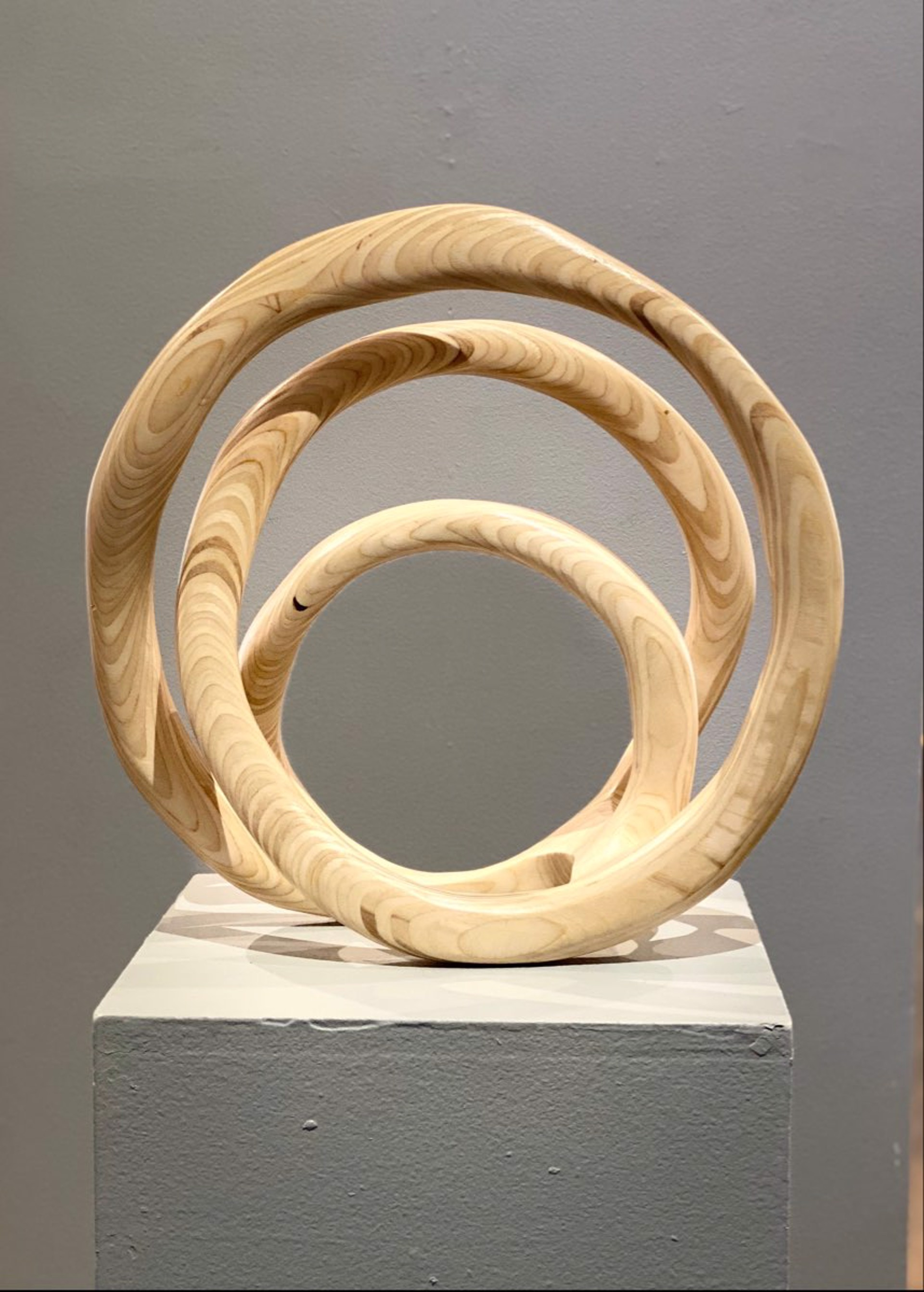 Baltic Birch Plywood Cycle by Caprice Pierucci