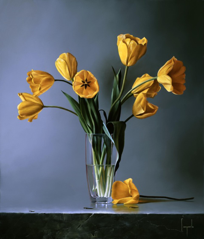 Tulipani Gialli by Dario Campanile