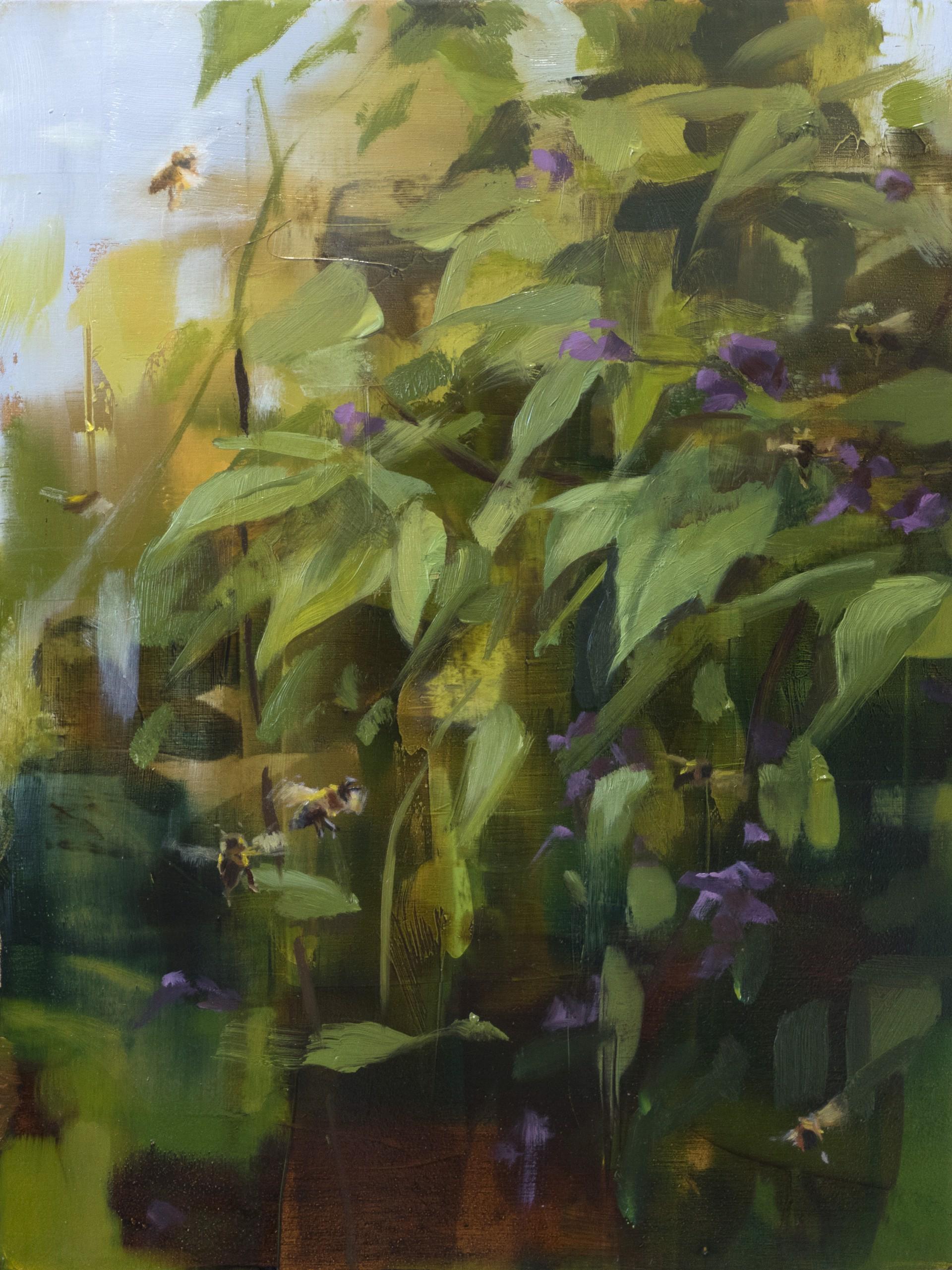 Bramble by Robin Cole