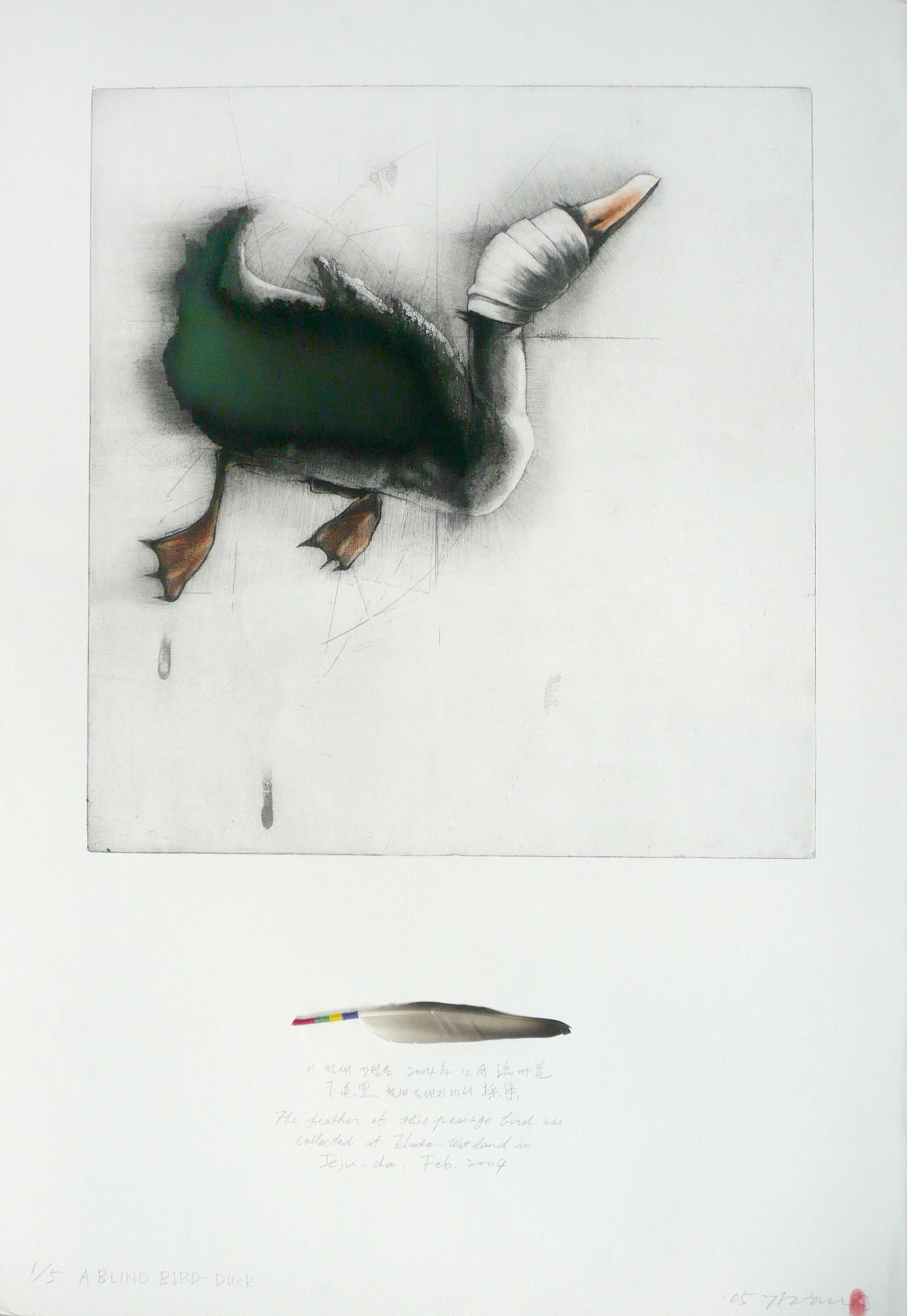 A Blind Bird: Duck (1/5) by Gilchun Koh