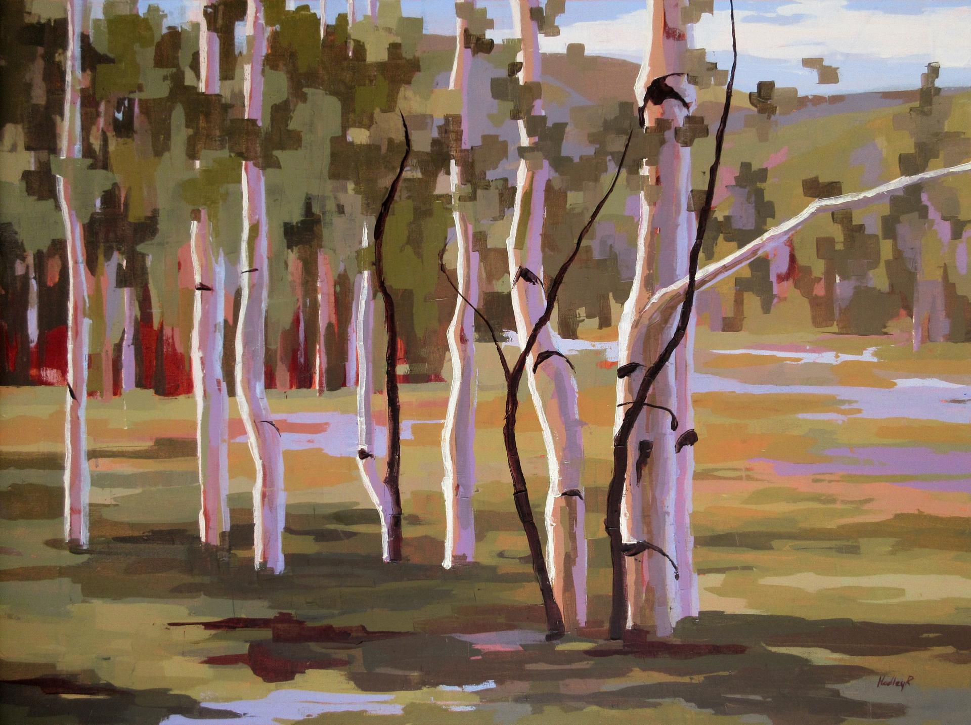 Verano  by Hadley Rampton
