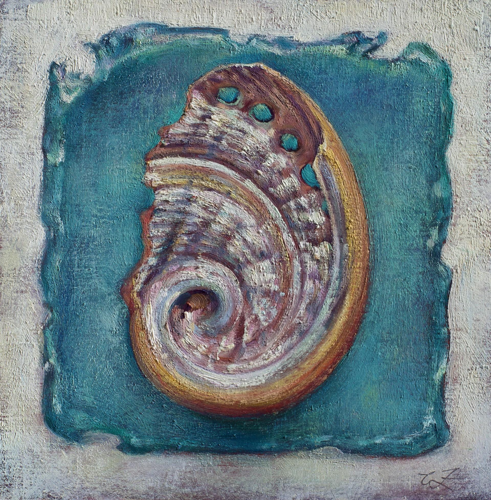 Abalone 2 by Caroline Zimmermann