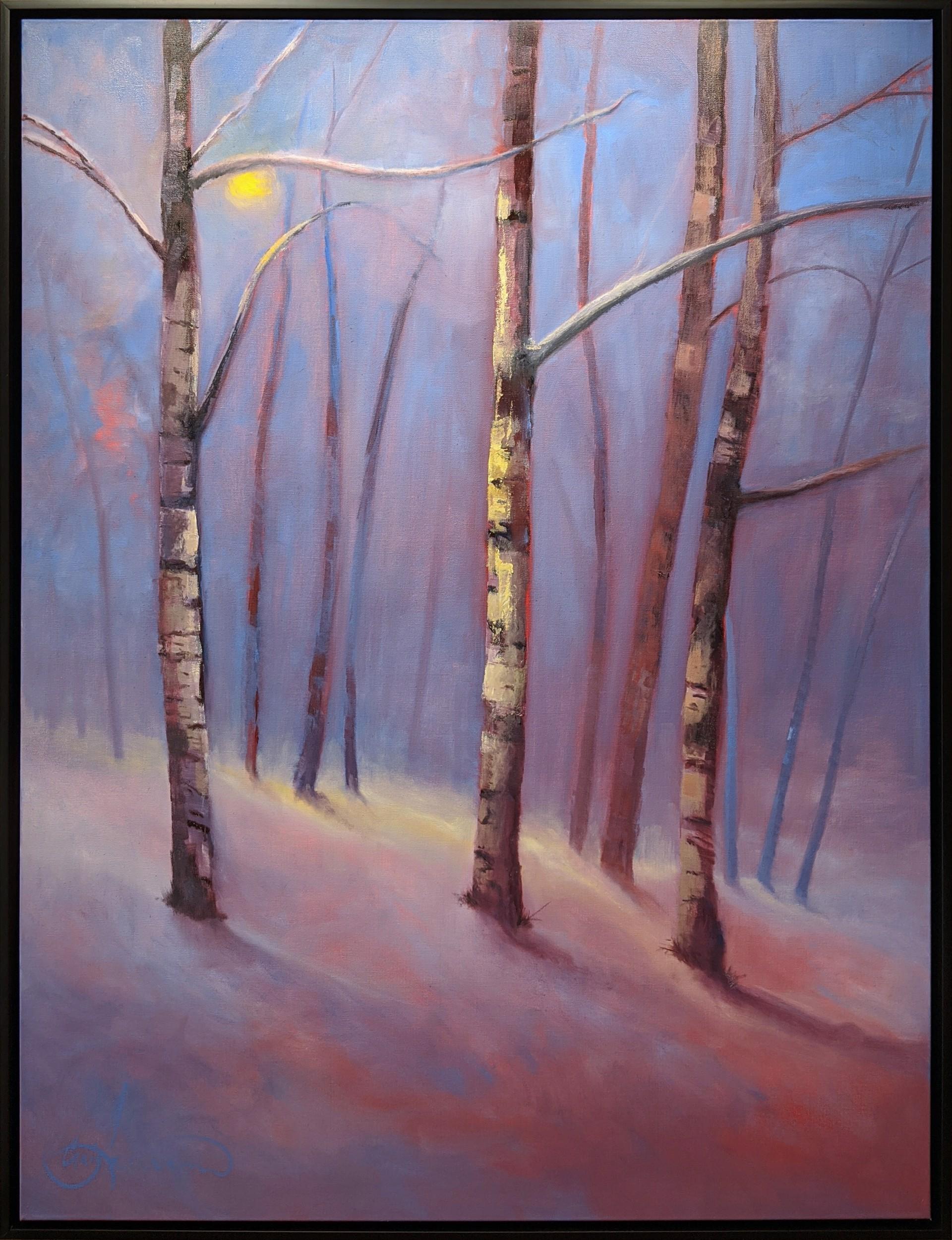 Aspen Glow by Craig Freeman