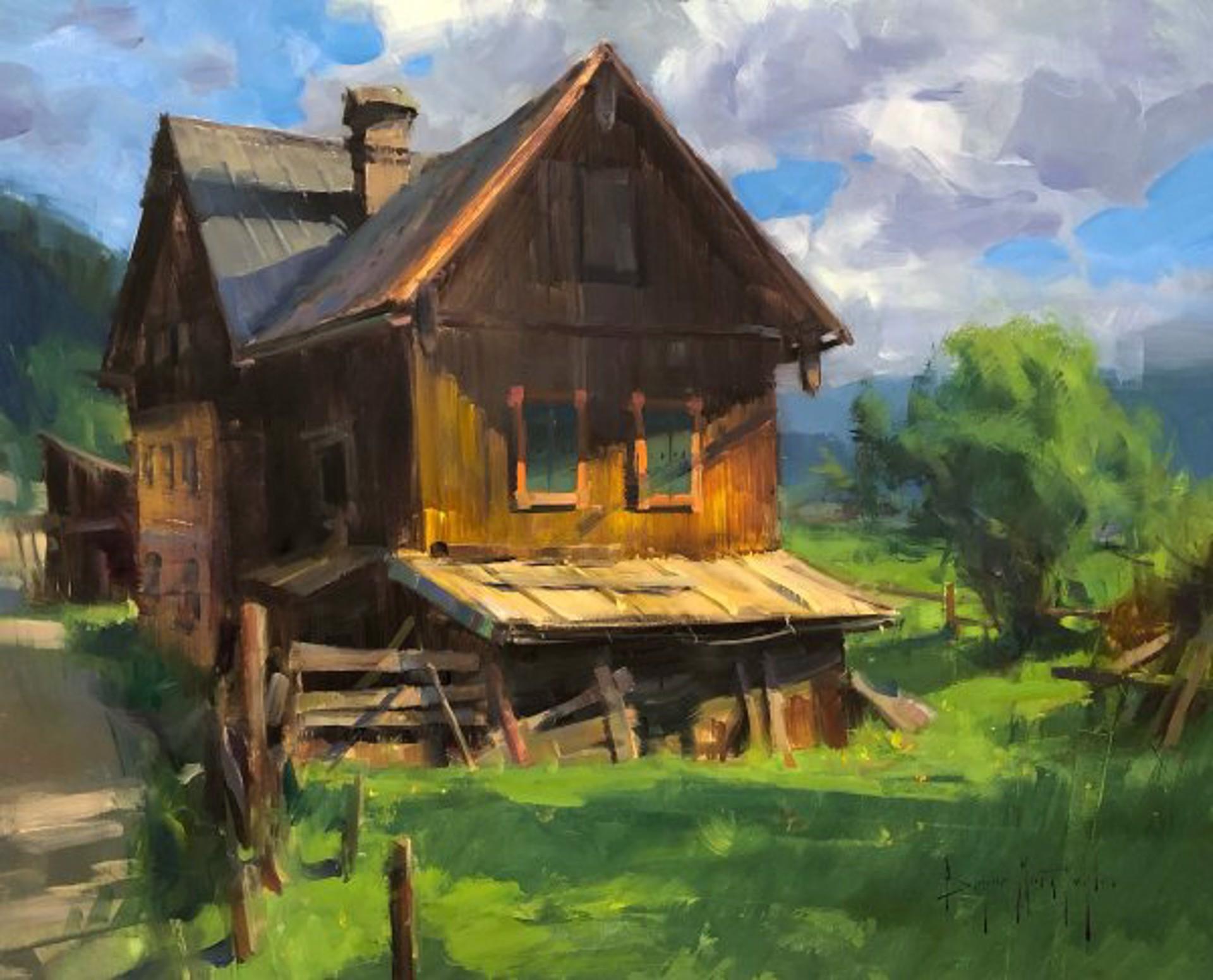 Saltzkammergut Farm by Bryan Mark Taylor