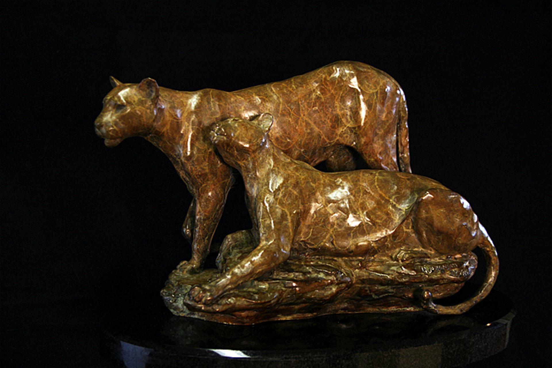 Mountain Lion Pair (Large) by Melvin Johansen