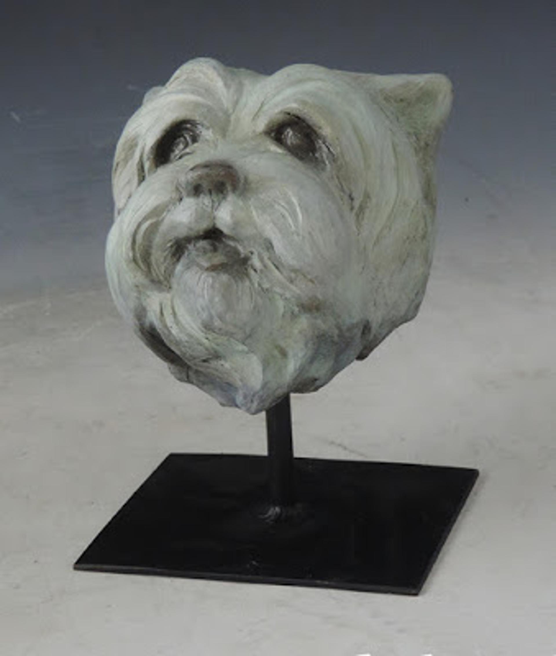 Westie Pup by Sandy Scott