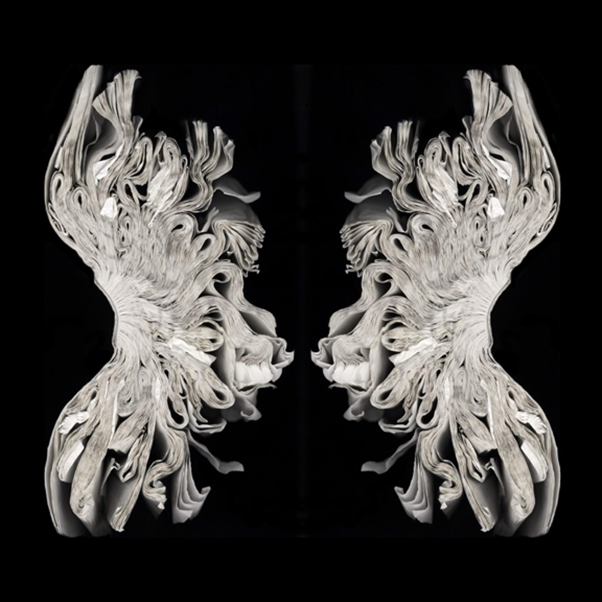 Rorschach Corset by Cara Barer