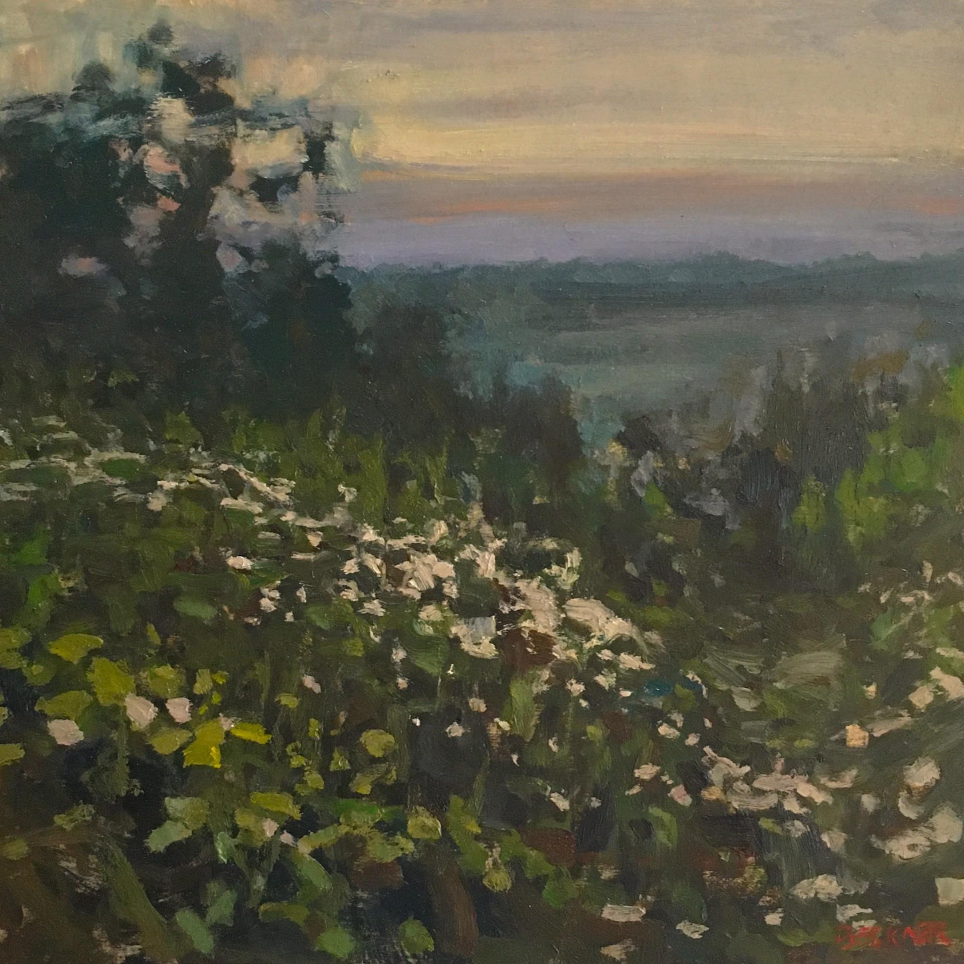 Sunset by Jim Beckner
