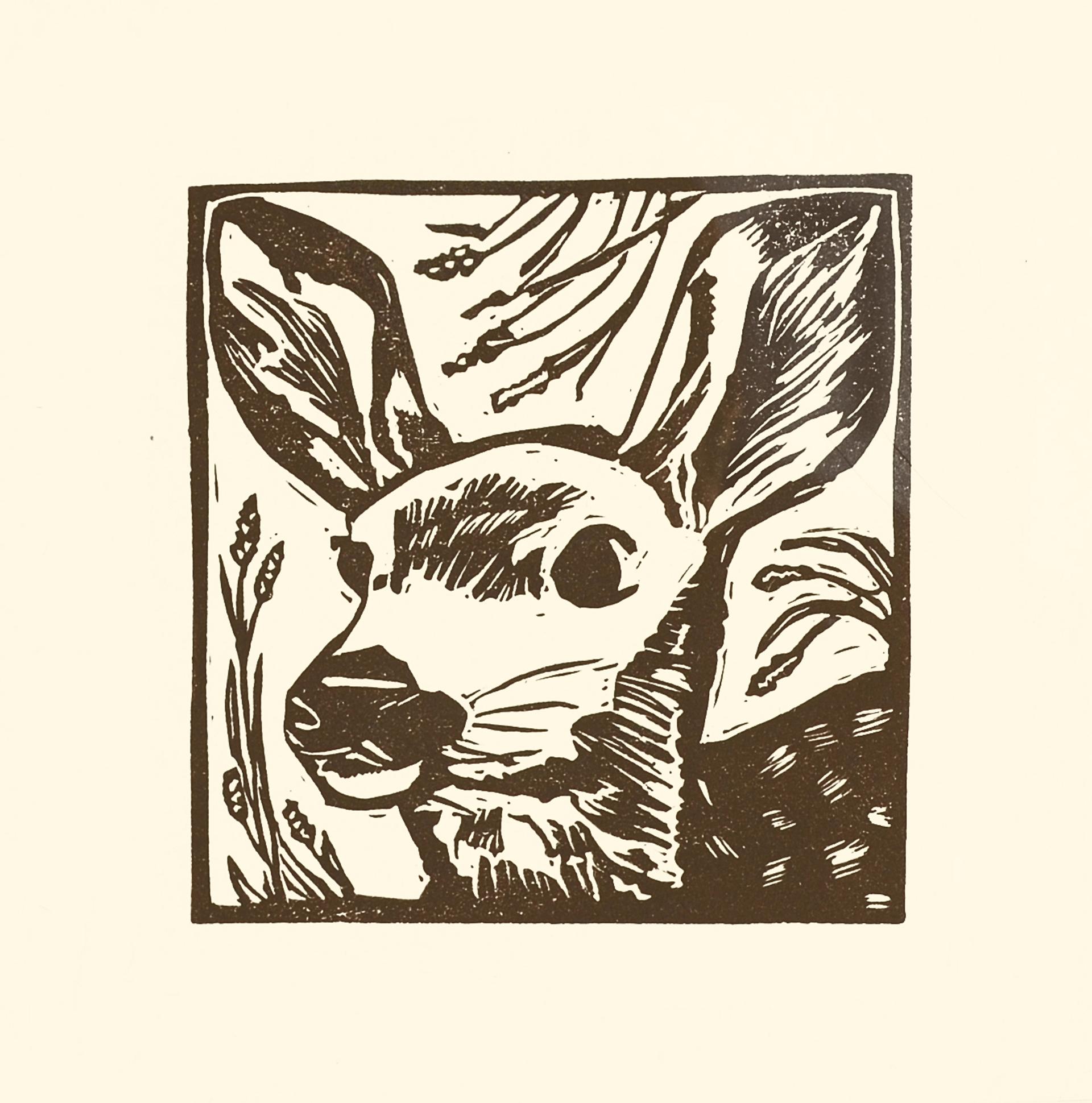 Mule Deer Fawn by Kat Kinnick