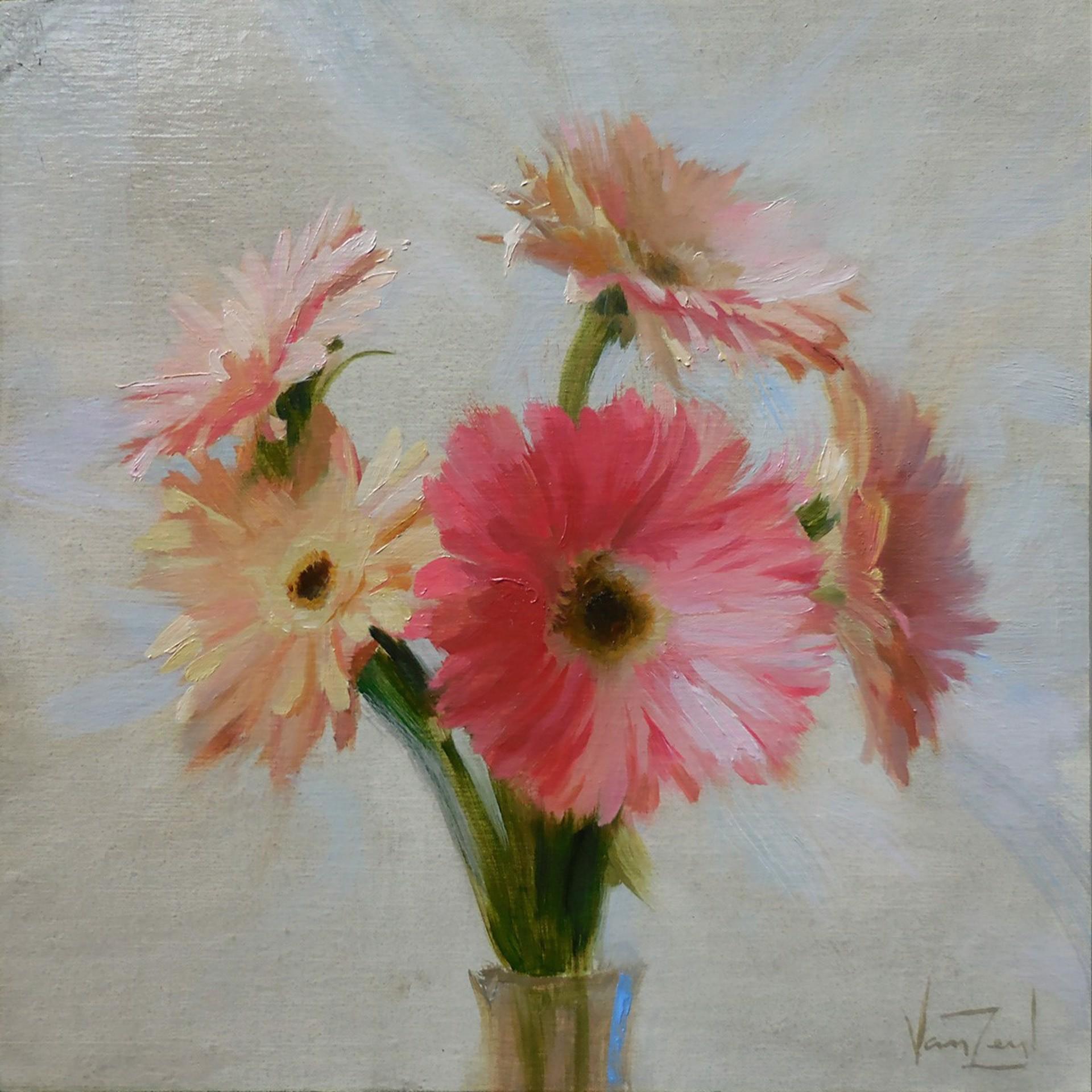 Daisies by Michael Van Zeyl
