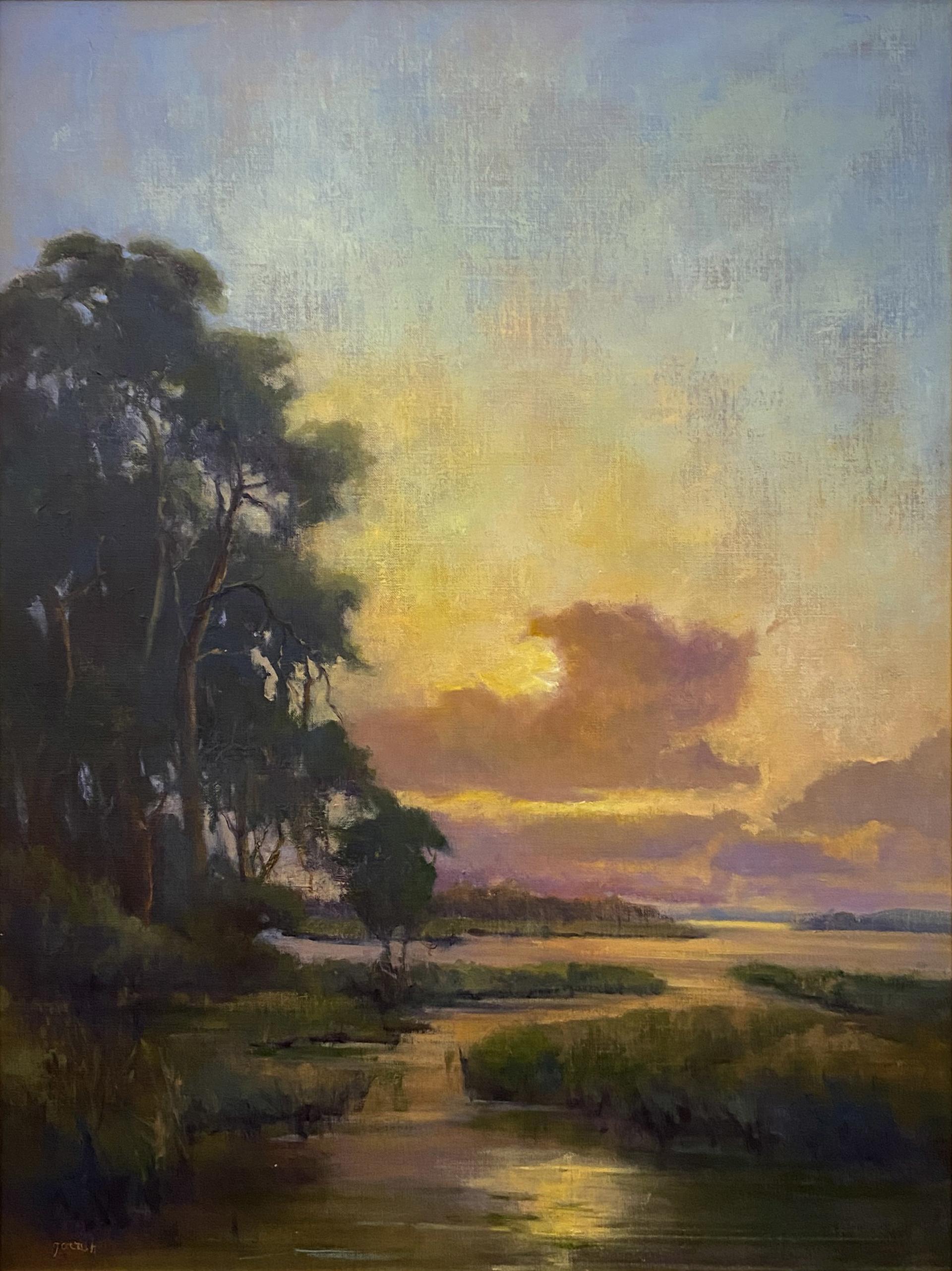 Marsh at Dawn  by Mary Garrish