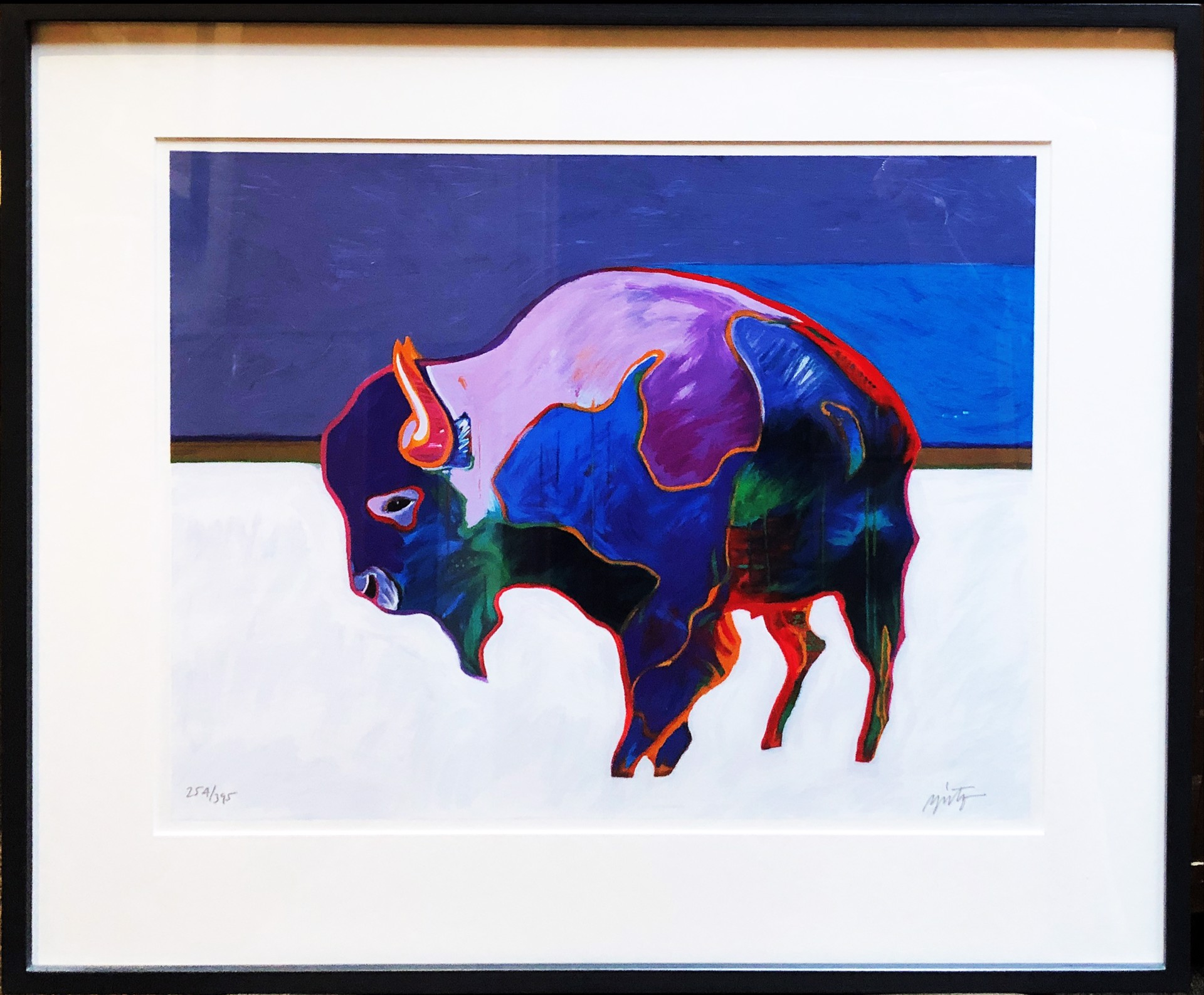 Taos Buffalo by John Nieto