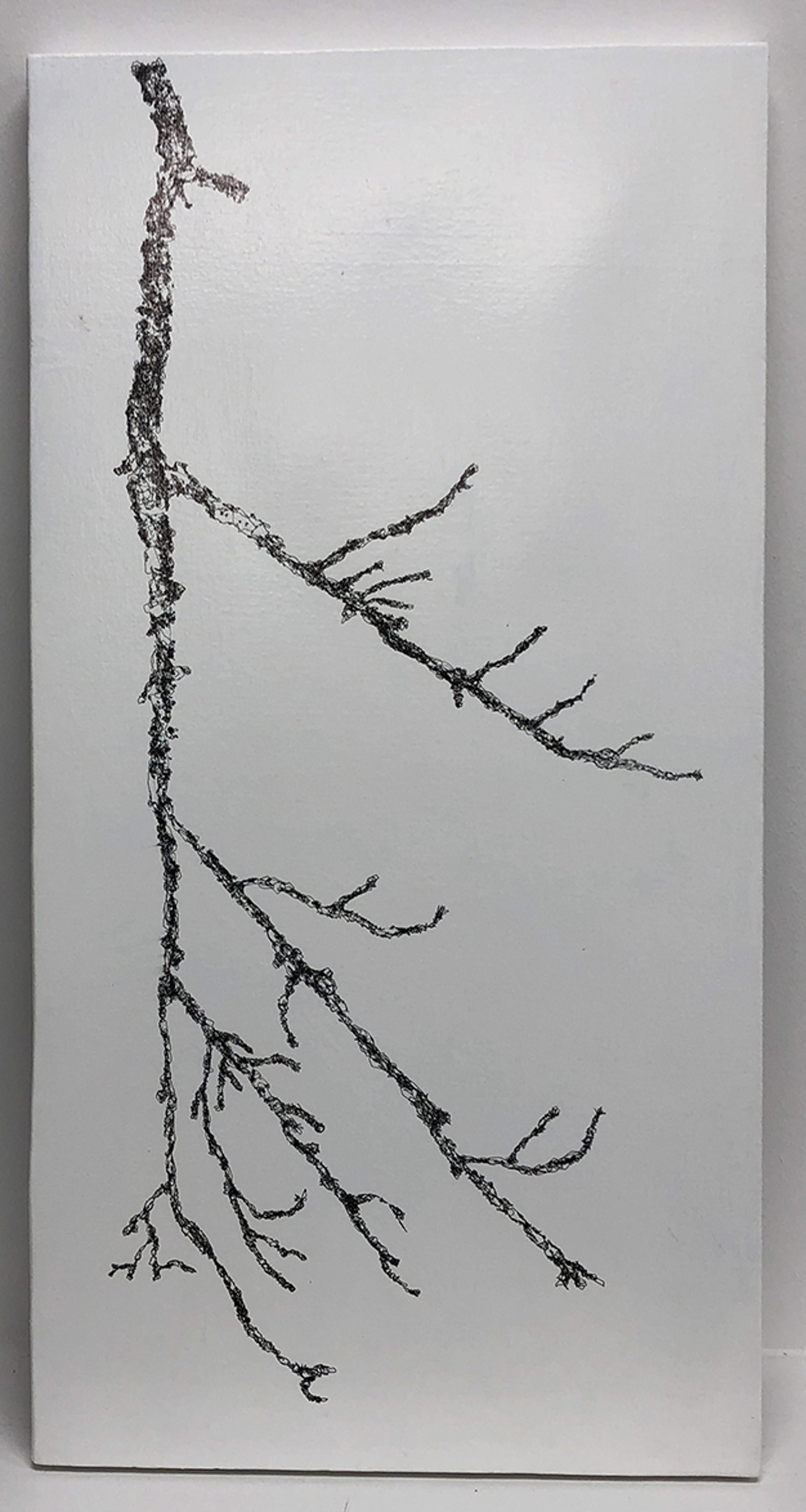 11,301 by John Adelman