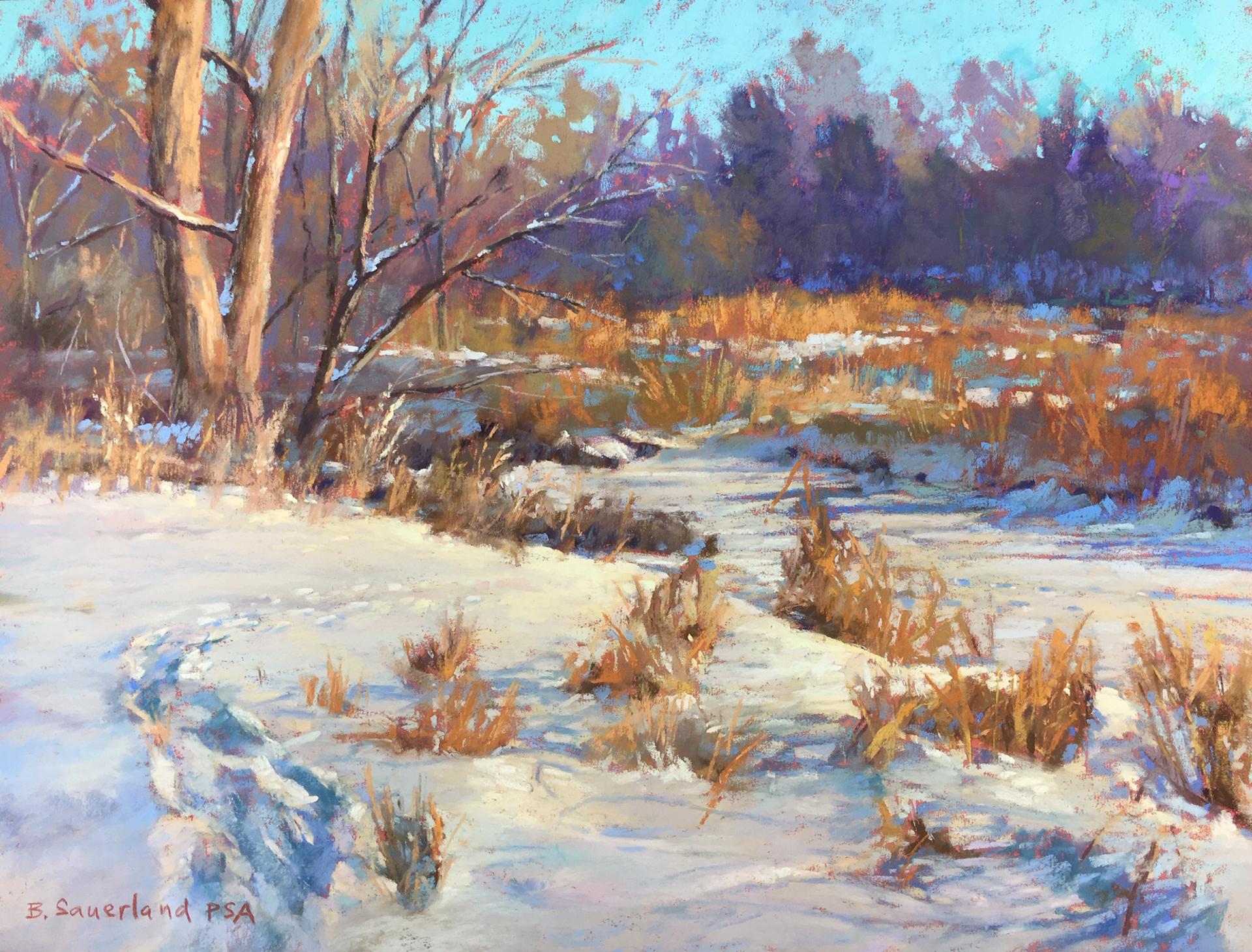 Buffalo Creek by Brian Sauerland