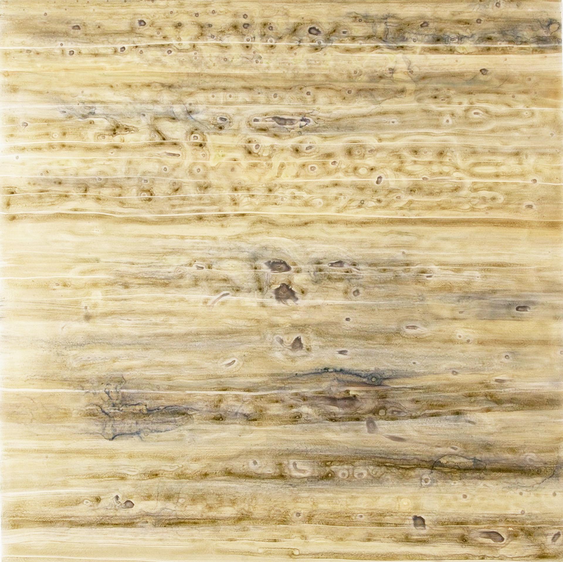 Silver Lining no. 1411 by Jessie Morgan