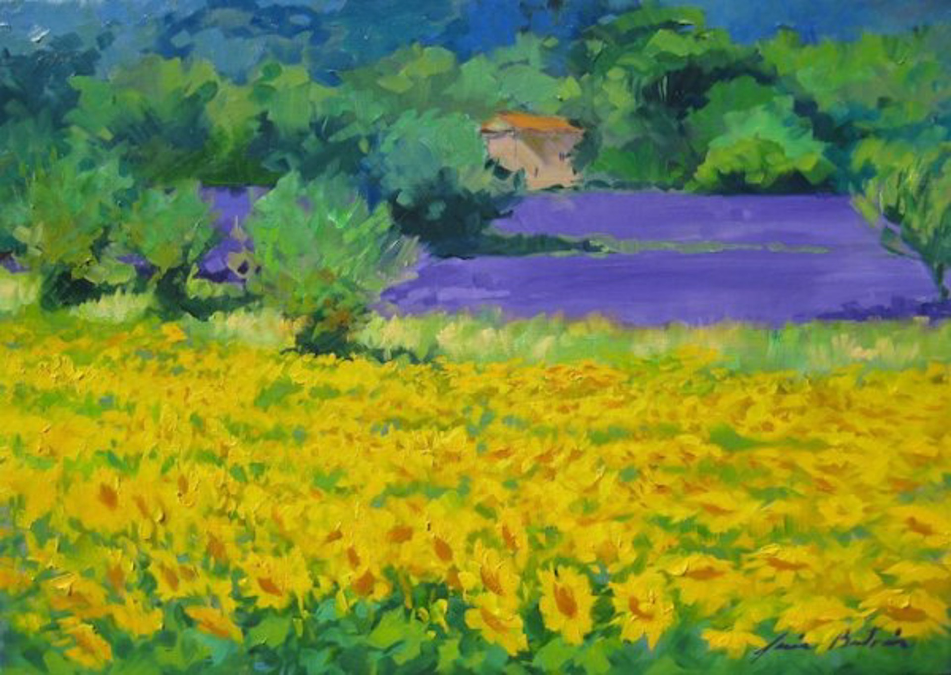 Sunflowers In The Lavender by Maria Bertrán