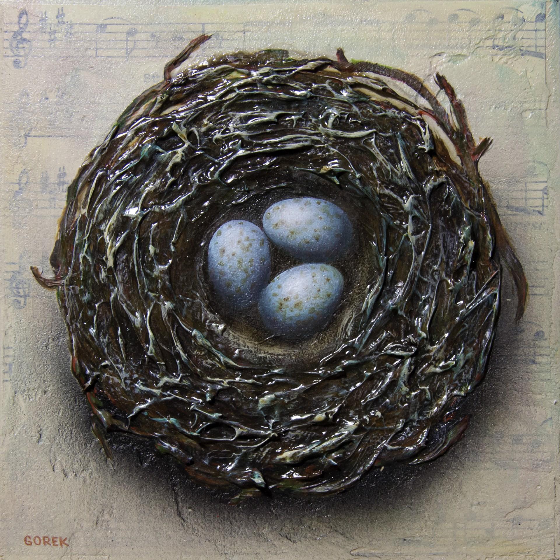 Birds Nest 3 by Thane Gorek