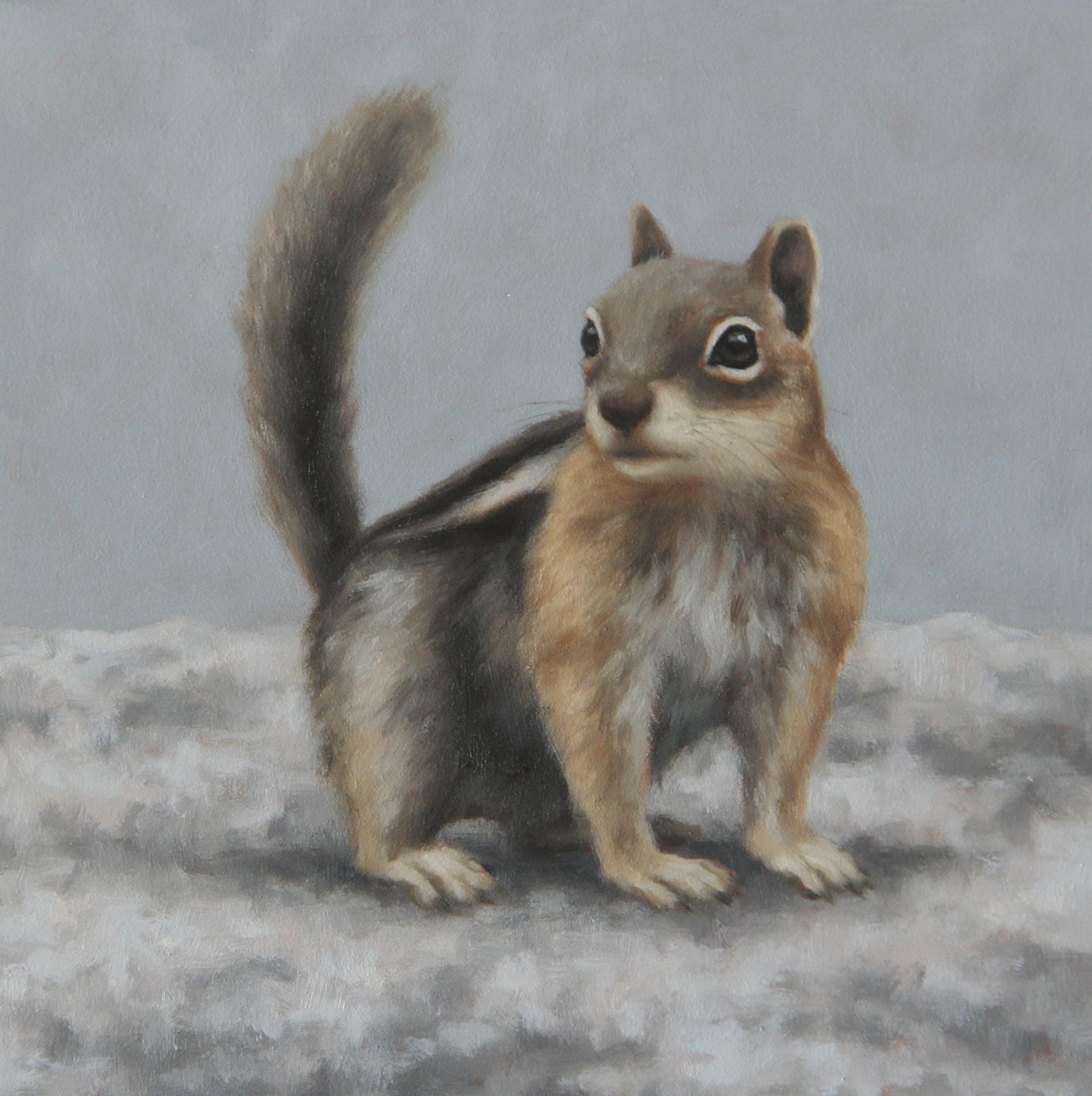 Rocky Mountain Ground Squirrel by Sarah Becktel