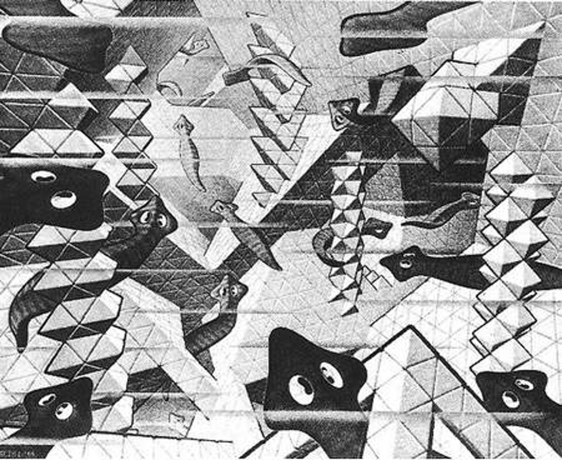 Flatworms by M.C. Escher